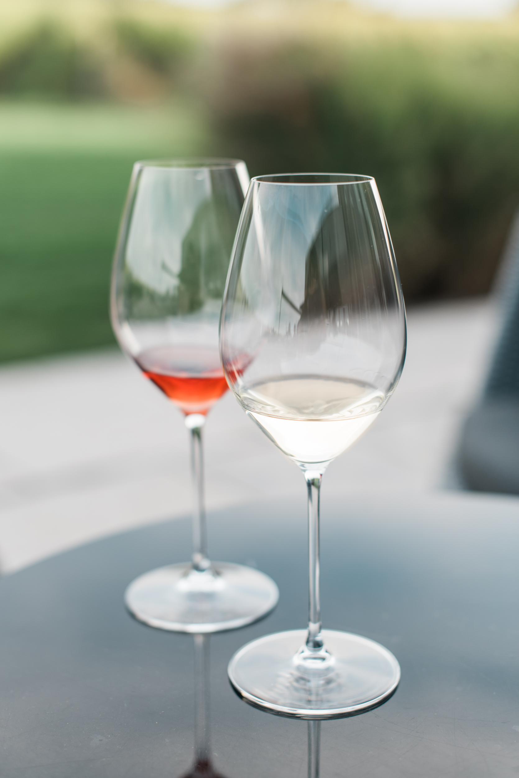 vineyard-4.jpg