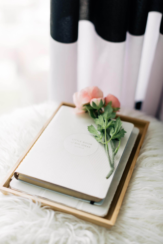 little-book-bit-ideas