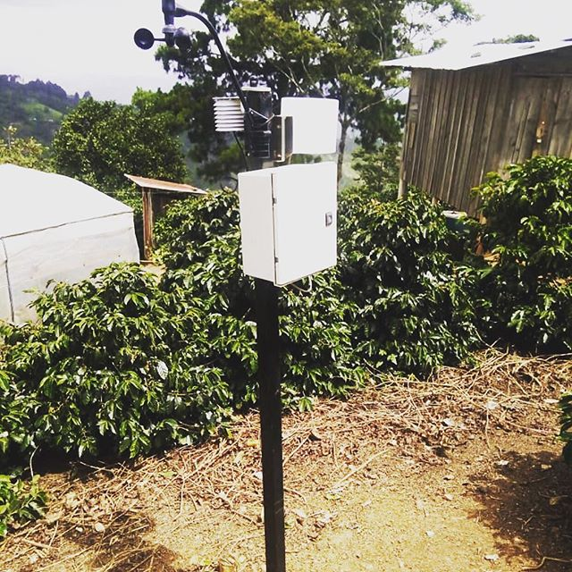 ***Euphoria Direct Investment Coffee*** ~ Project #1 ~ We are pleased to announce our first project!  This project has already been fully funded by Euphoria Coffee Co. and is scheduled to be complete by the end of 2018. ~ Euphoria Coffee Company has partnered with @volcafespecialty to install TEN weather station (pictured) across key coffee farms in Guatemala. ~ This will allow the farmers to easily measure the rainfall, temperature, relative humidity, etc. All these features are key in the coffee production to foresee flowering, moments to apply fertilizer, growth patterns. ~ This stations are being installed in key strategic farms that will allows them to extrapolate the data and share it with all the producers around the region. ~ It's easy to help us keep projects like this going!  Just buy a bag of Euphoria Coffee and we will donate .50/bag to future projects! Thank you for supporting your local Kalamazoo coffee roaster and for making projects like this possible! ♥️ ~ Euphoria Coffee is available at the following locations in Kalamazoo, MI: @coexistcafe  @bookbugkzoo  @sawallhealthfoods  @pfc_kzoo  @midtownfreshmarket  @greendoordistilling  #euphoriacoffee #coffeefarmers #volcafeway #careforeachother #worktogether #coffee #coffeeproduction #coffeeproducers #guatemala #guatemalacoffee #kalamazoo #kalamazoomichigan #kzoocoffee #michigancoffee #michigancoffeeculture #discoverkalamazoo #teamwork #sustainablecoffee #sustainable #ethicalbusiness #localcoffee #puremichigan ##makeadifference #specialtycoffee #kalamazoocraftcoffee
