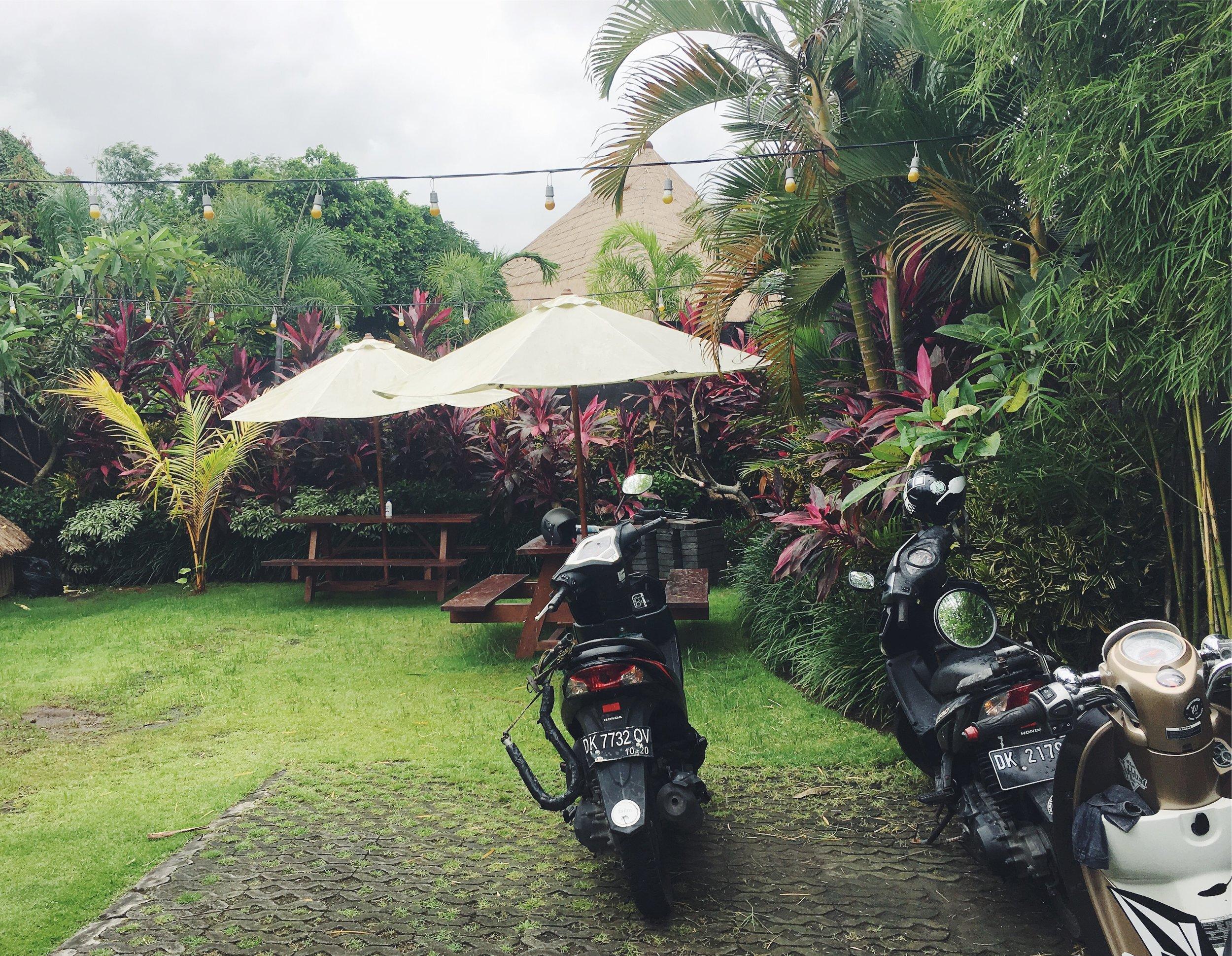 Bali-scooter.jpg