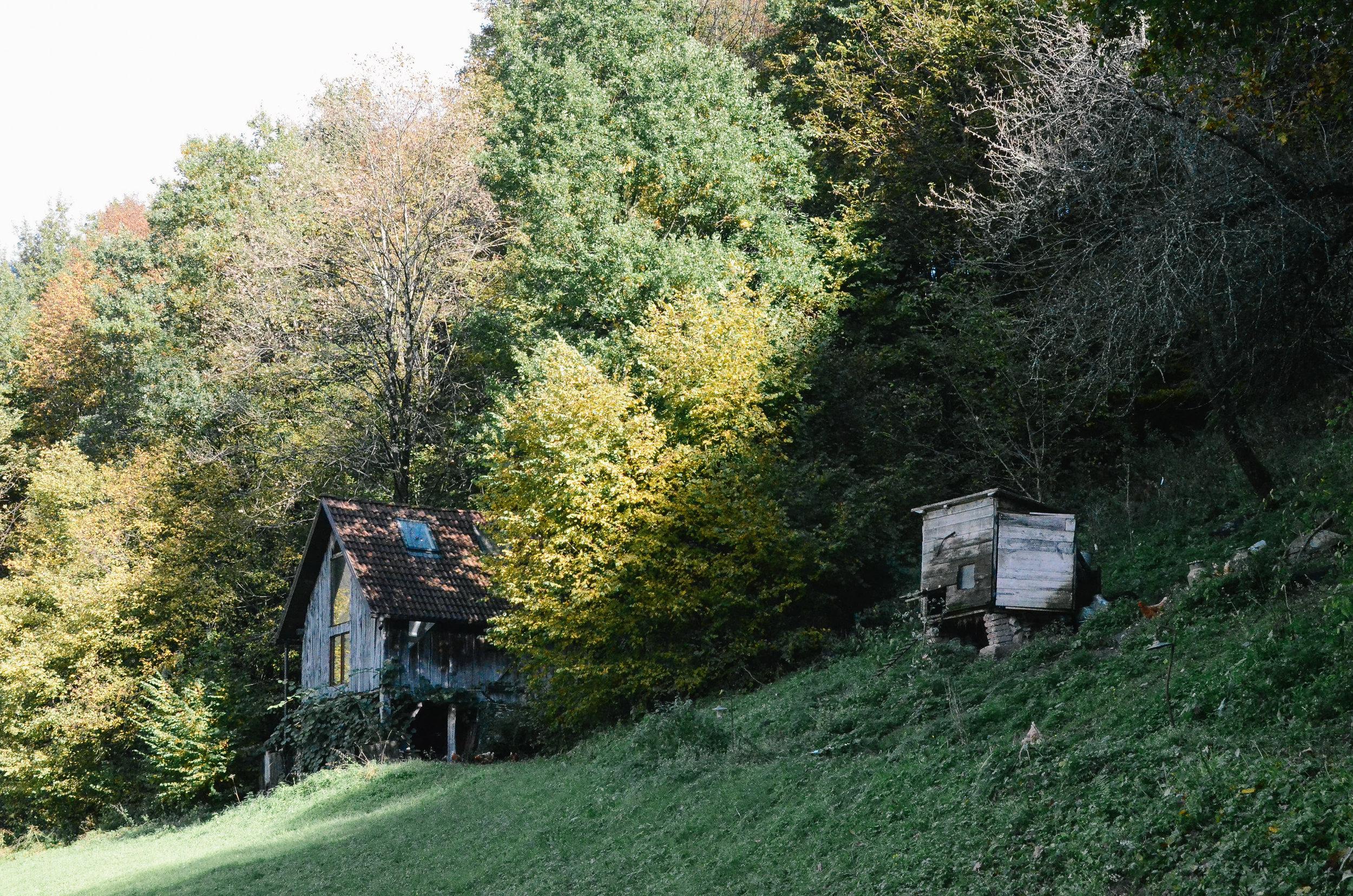 wwoofing-slovenia-klavze28-most-na-soci_DSC_0898.jpg