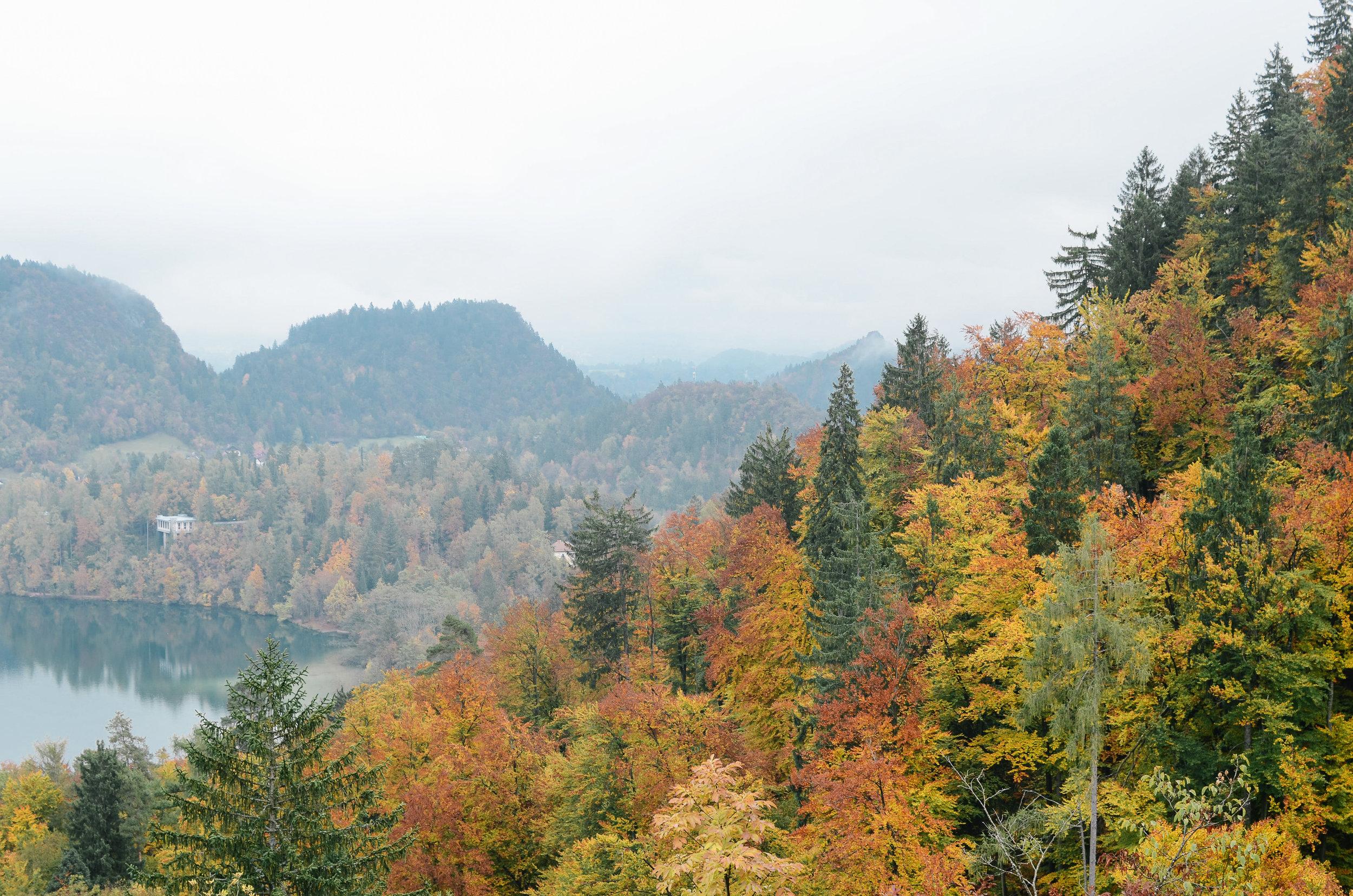 lake-bled-slovenia-travel-guide-lifeonpine_DSC_1525.jpg