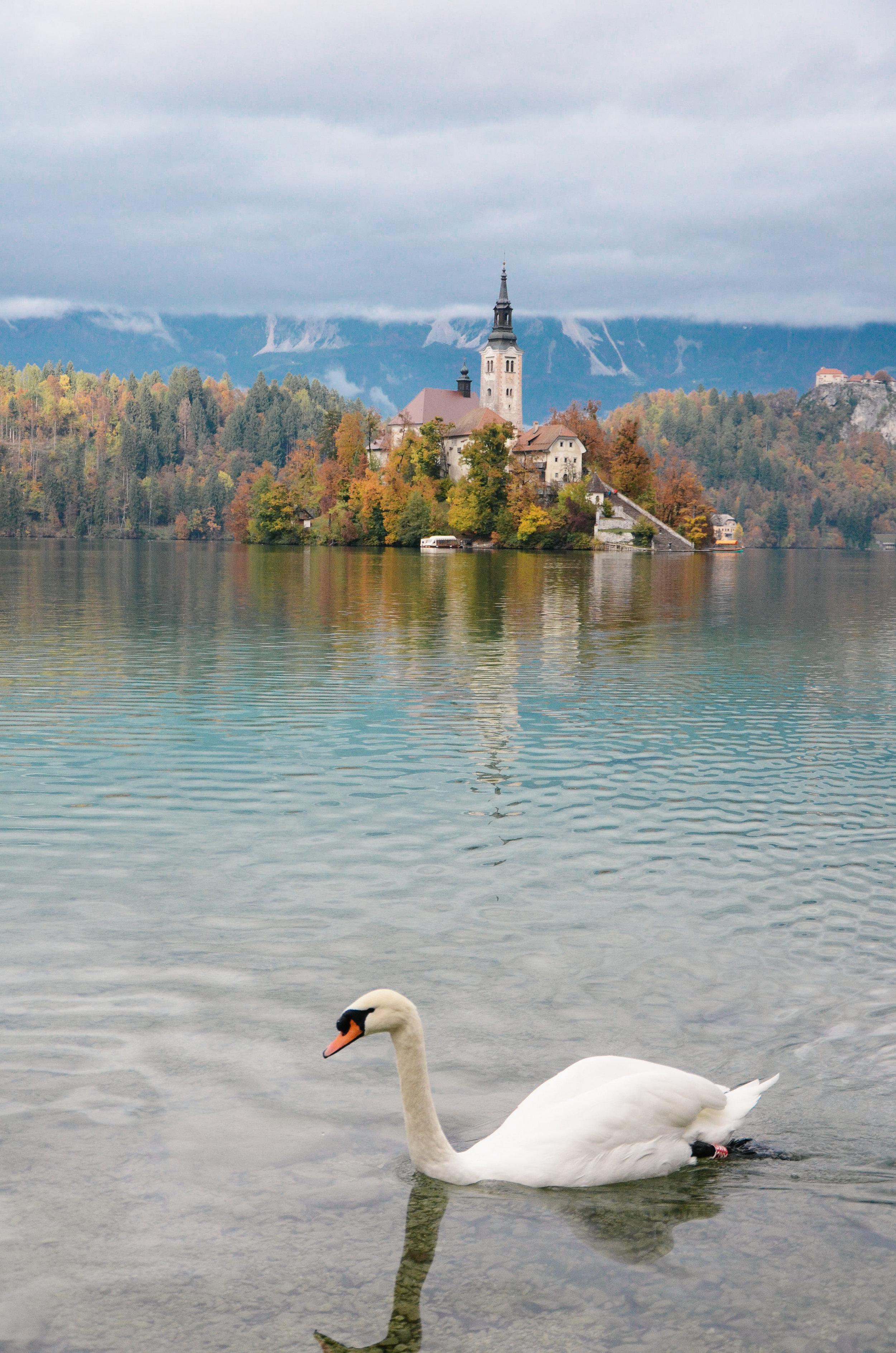 lake-bled-slovenia-travel-guide-lifeonpine_DSC_1660.jpg