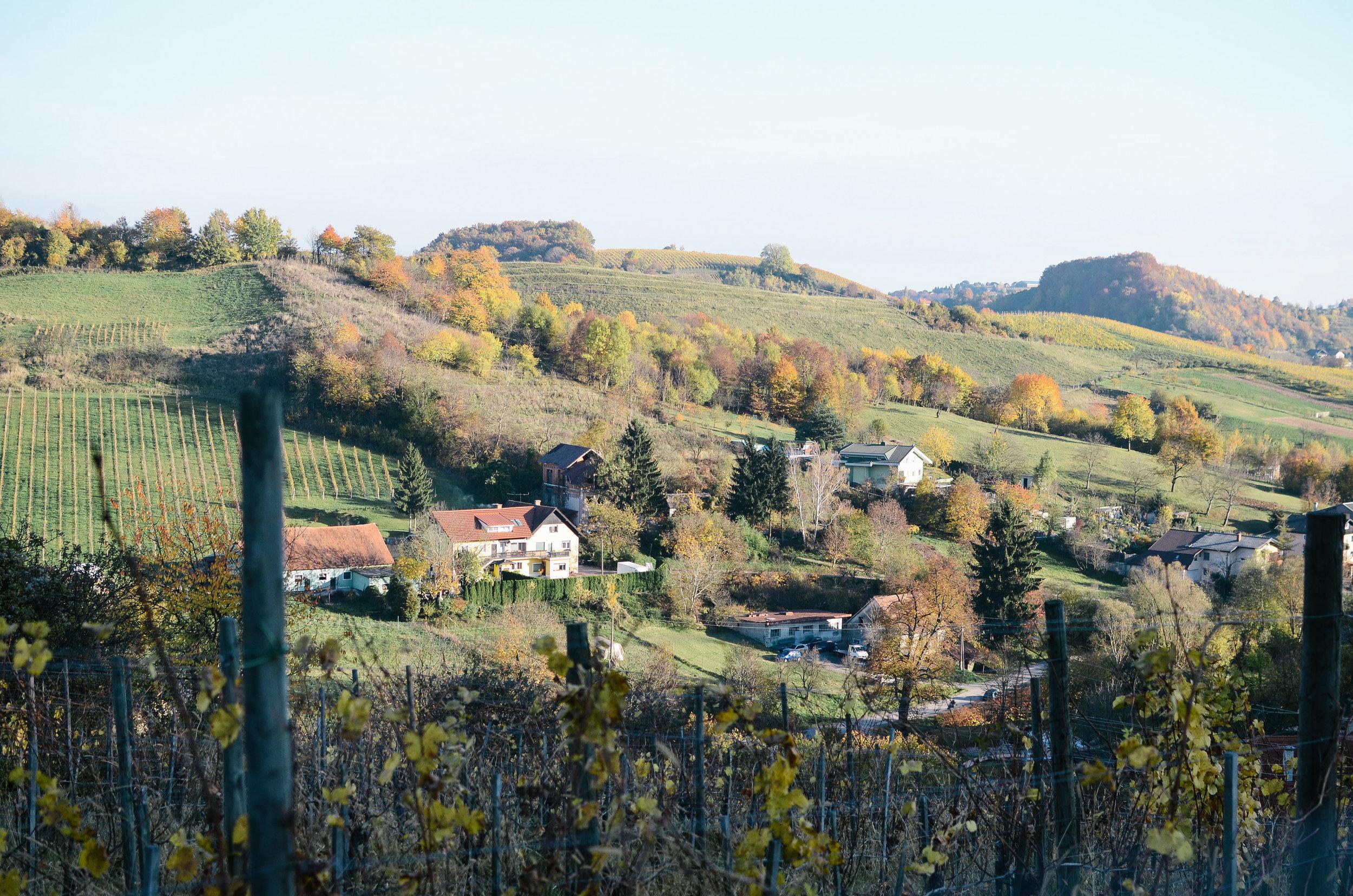 slovenia-travel-glamping-chateau-ramsak_DSC_2187.jpg