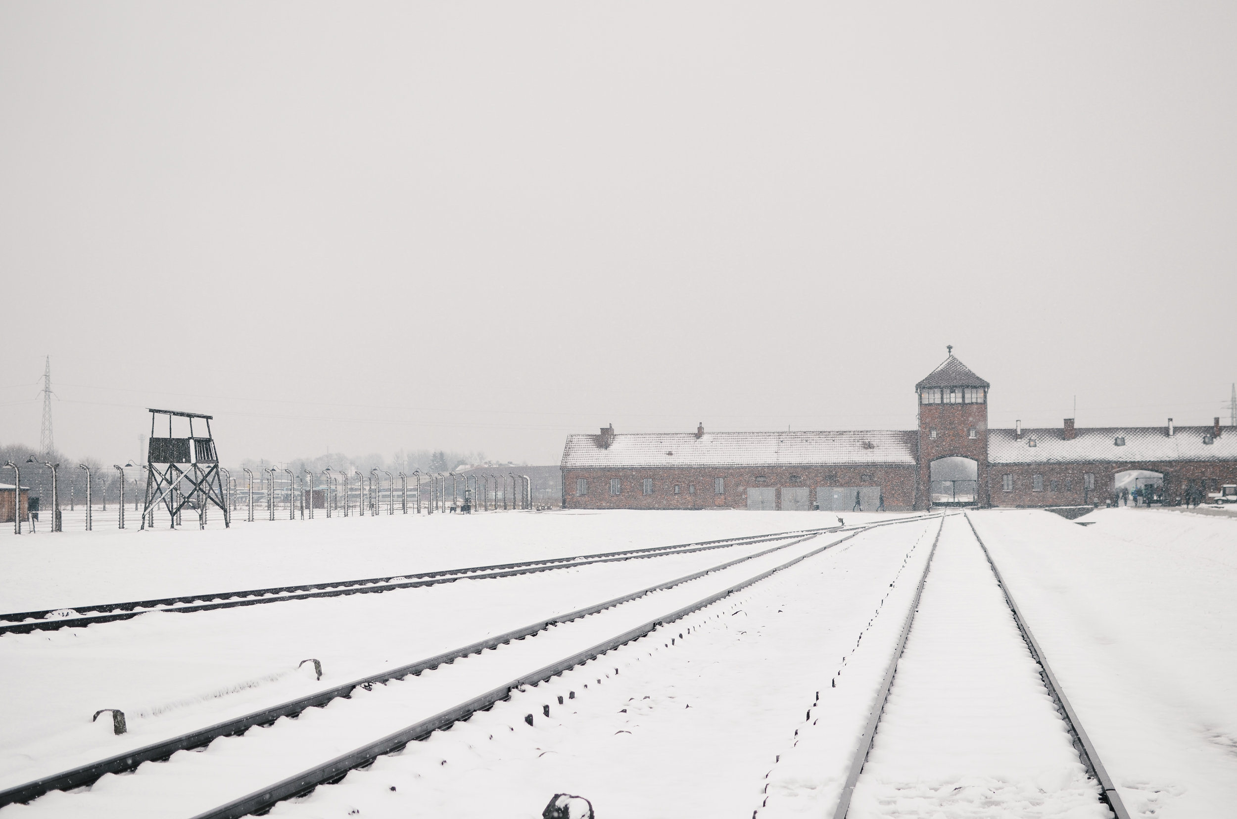 ^^ the train track where prisoners arrived. the young and healthy were told to go in one direction, and the sick or elderly were sent immediately to gas chambers