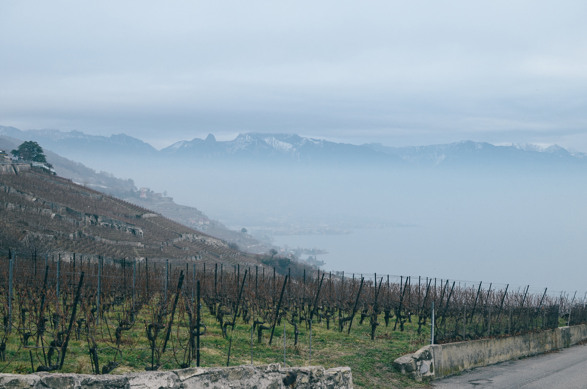 Day-Trips-From-Geneva-Switzerland_DSC_0777.jpg