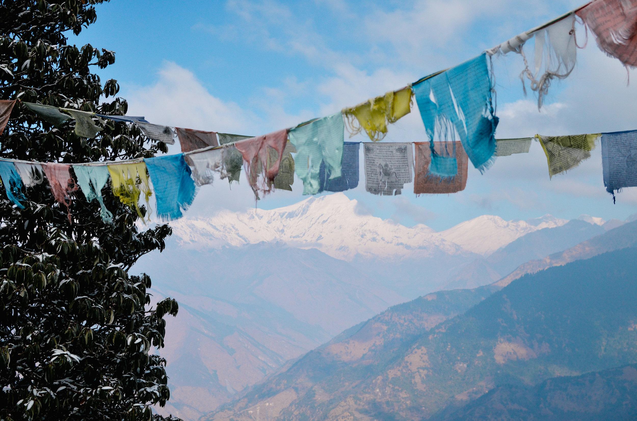 nepal-trek-annapurna_DSC_1362.jpg