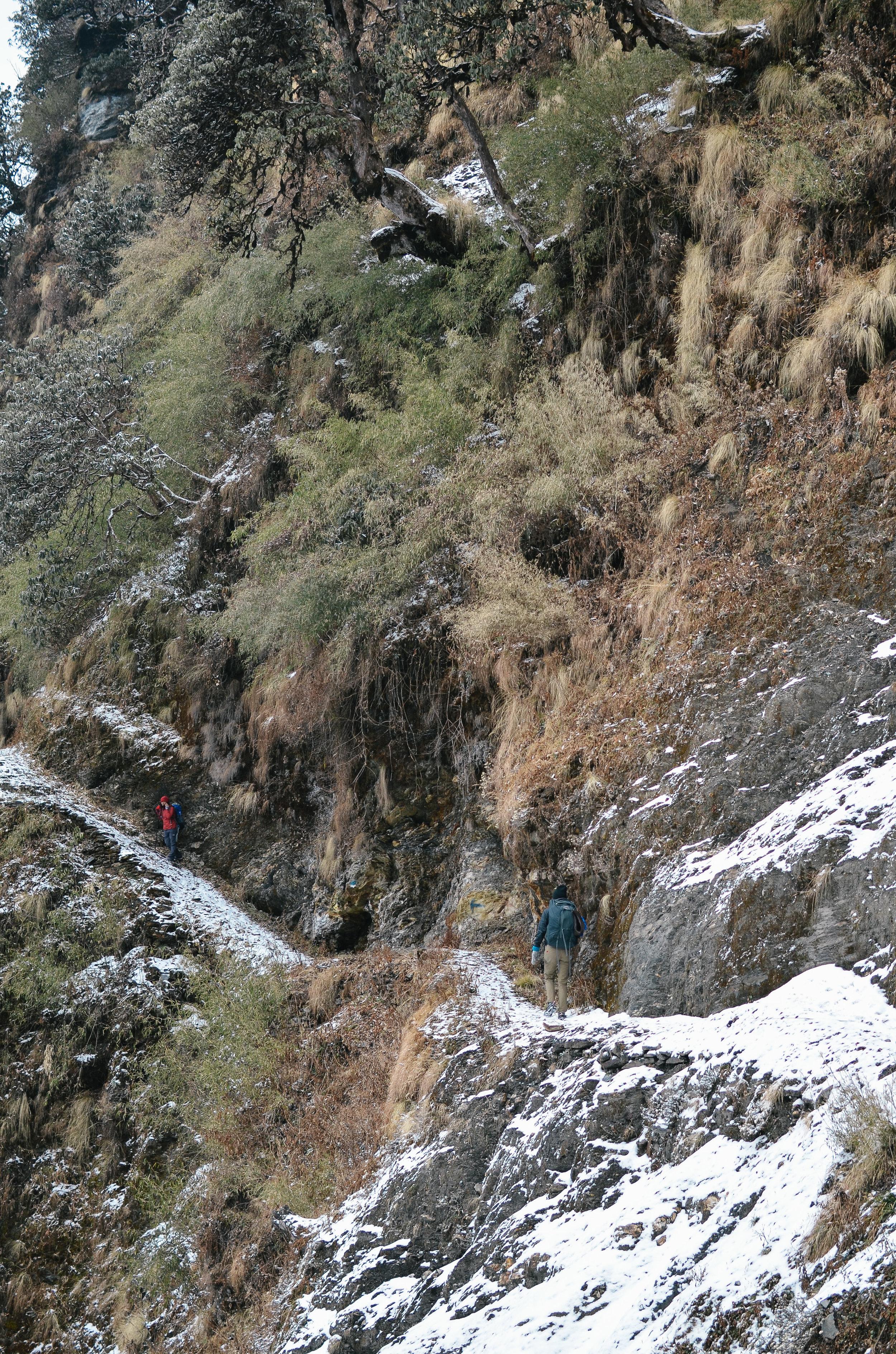 nepal-trek-annapurna_DSC_1409.jpg