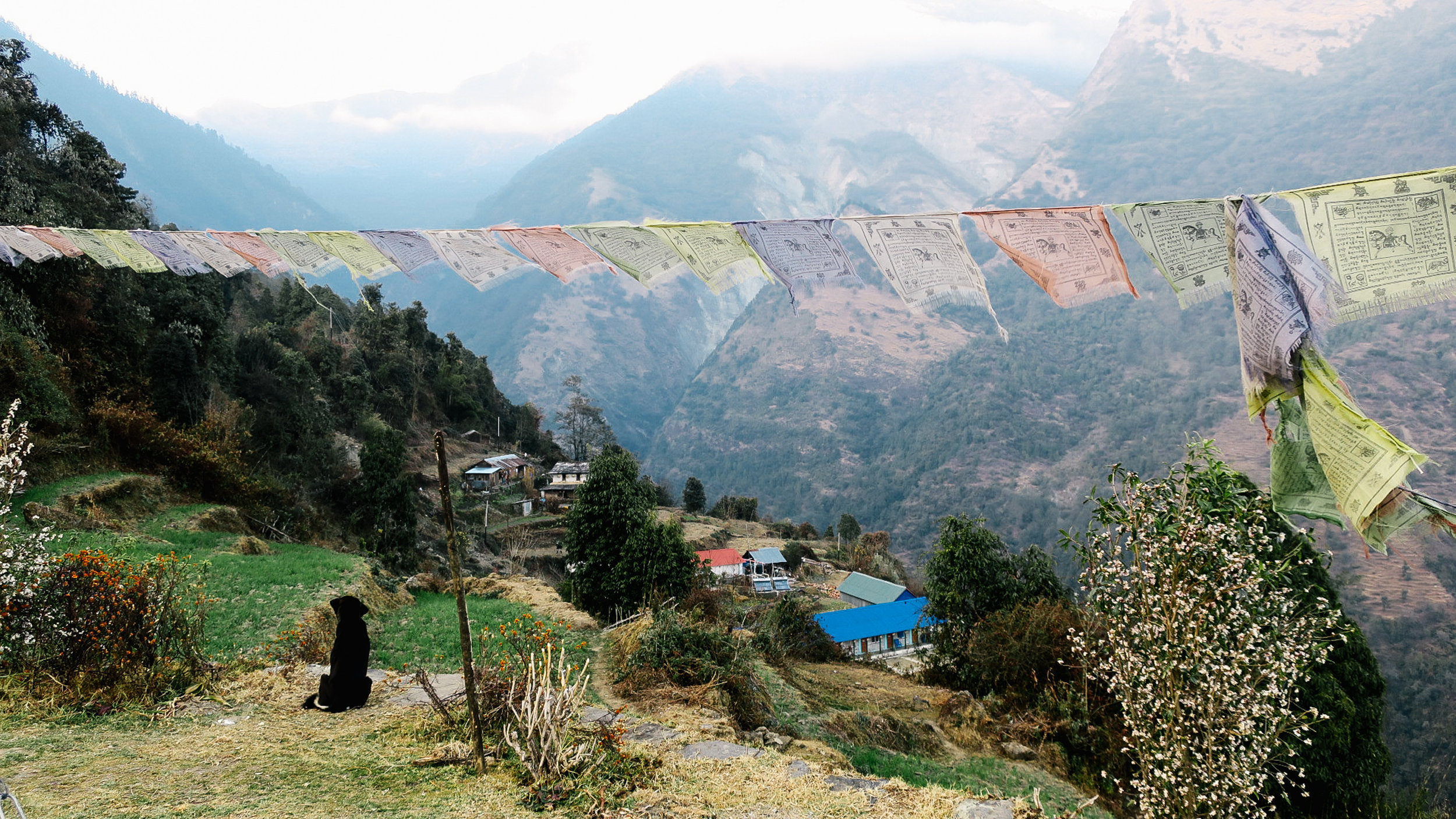 nepal-trek-annapurna_IMG_0844.jpg