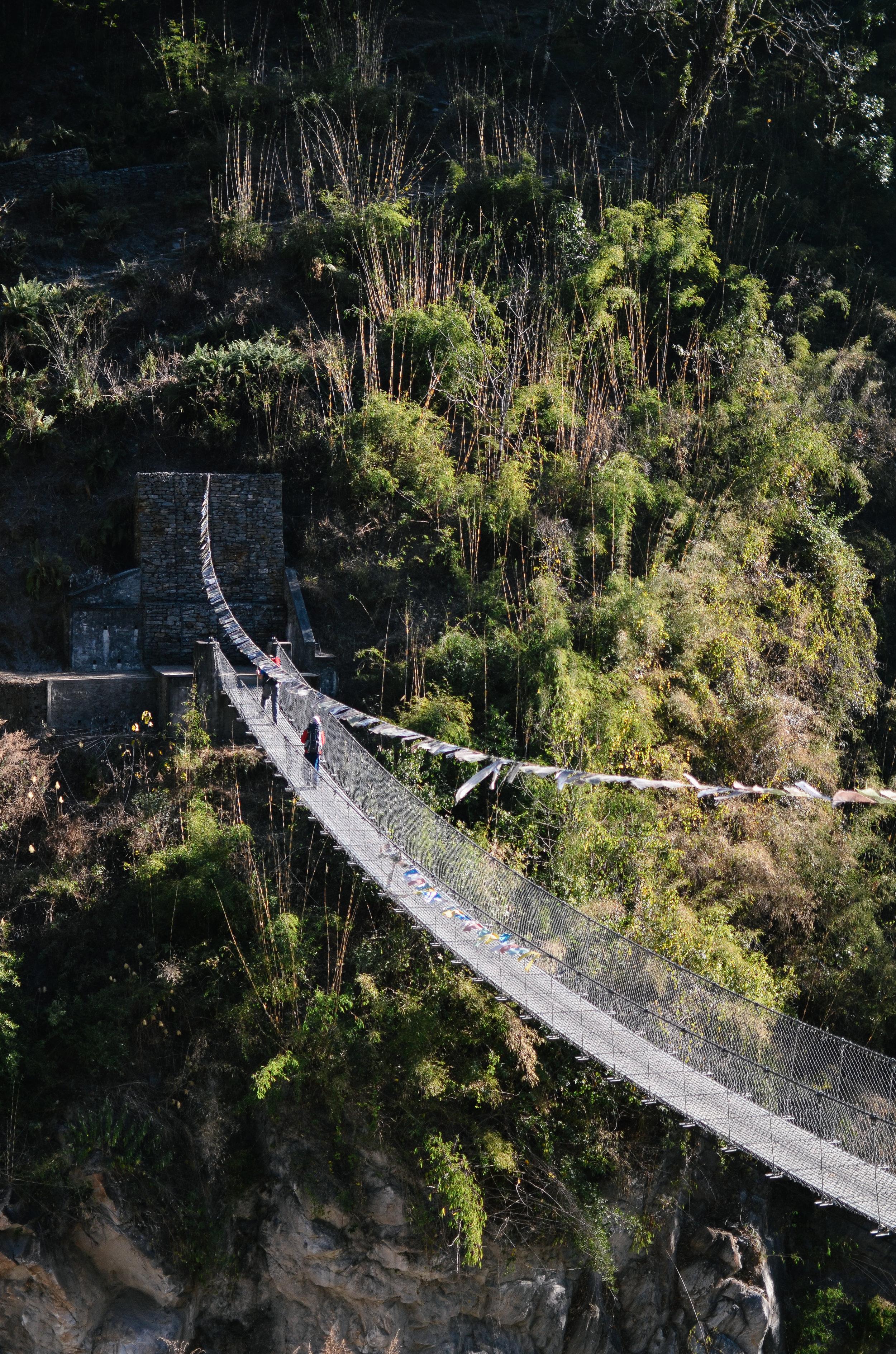 nepal-trek-annapurna_DSC_1553.jpg