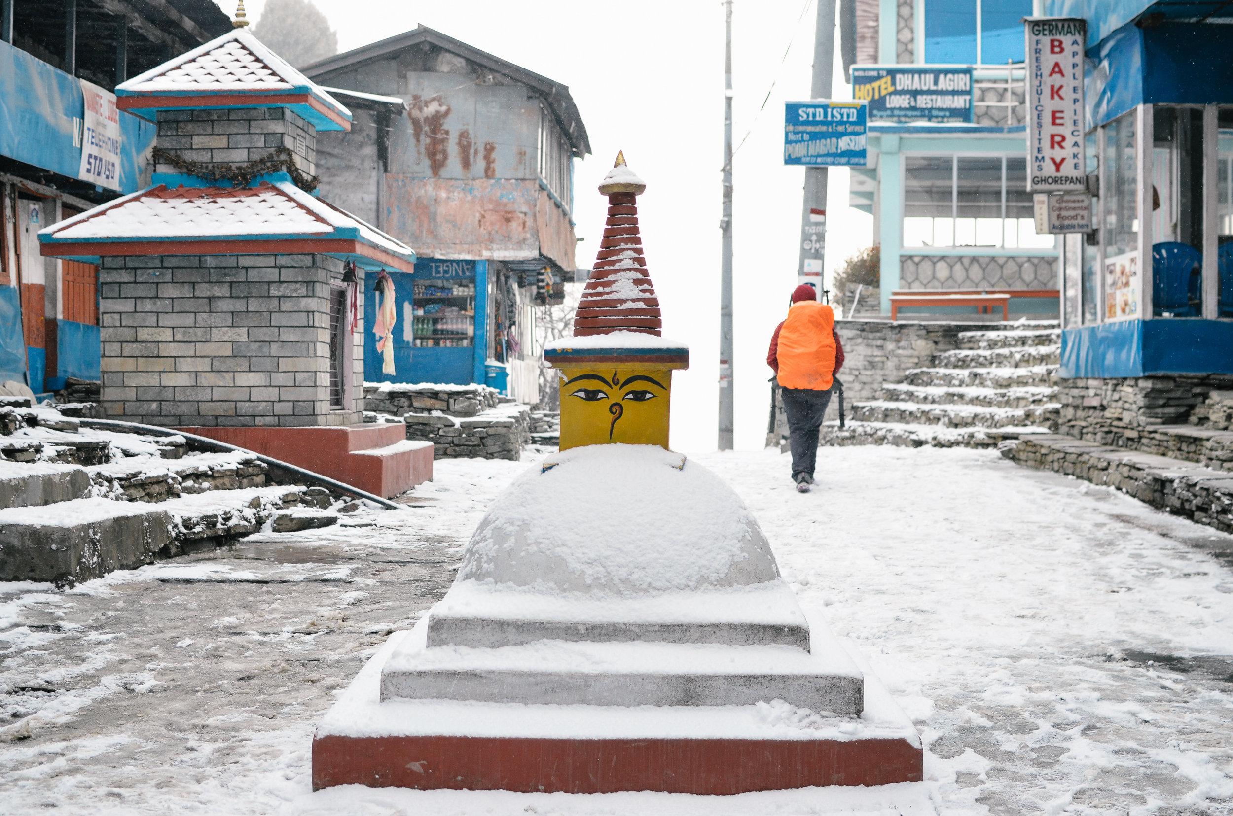 nepal-trek-annapurna_DSC_1266.jpg