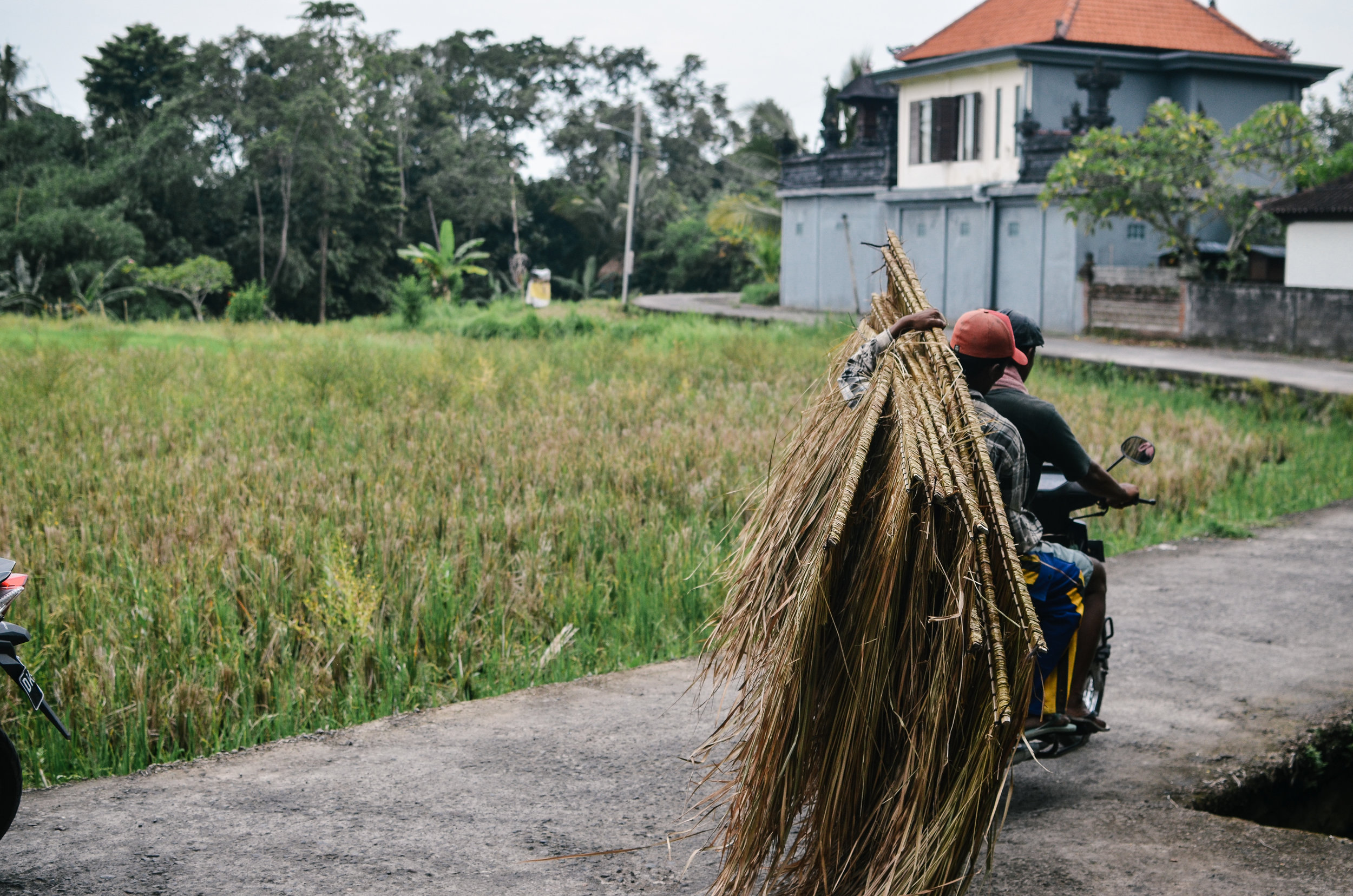 bali+mosca+bamboo+lodge+bali+ubud+lifeonpine_DSC_2750.jpg