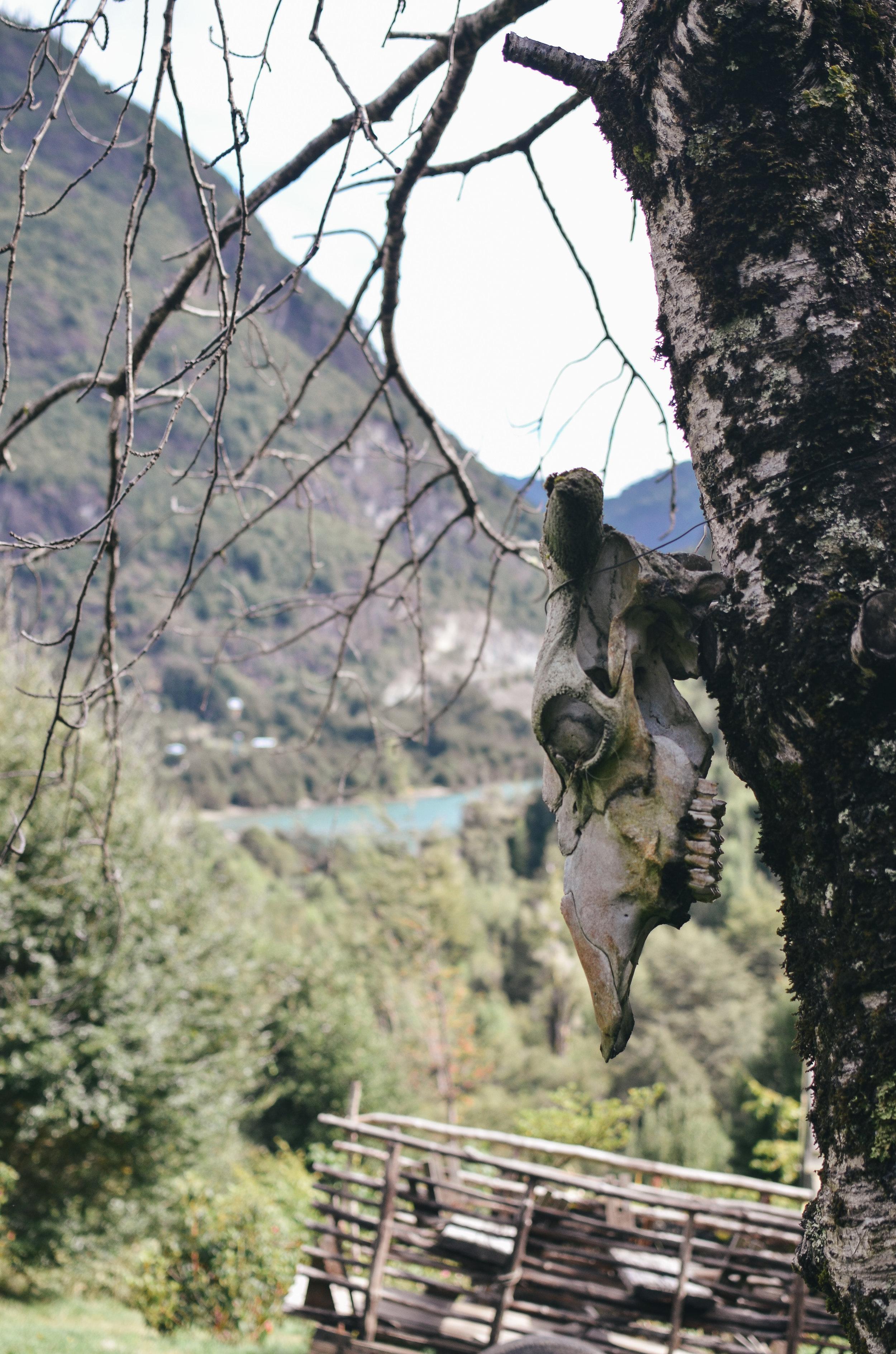 barraco+lodge+chile+life+on+pine+travel+blog+life+on+pine_DSC_0546.jpg