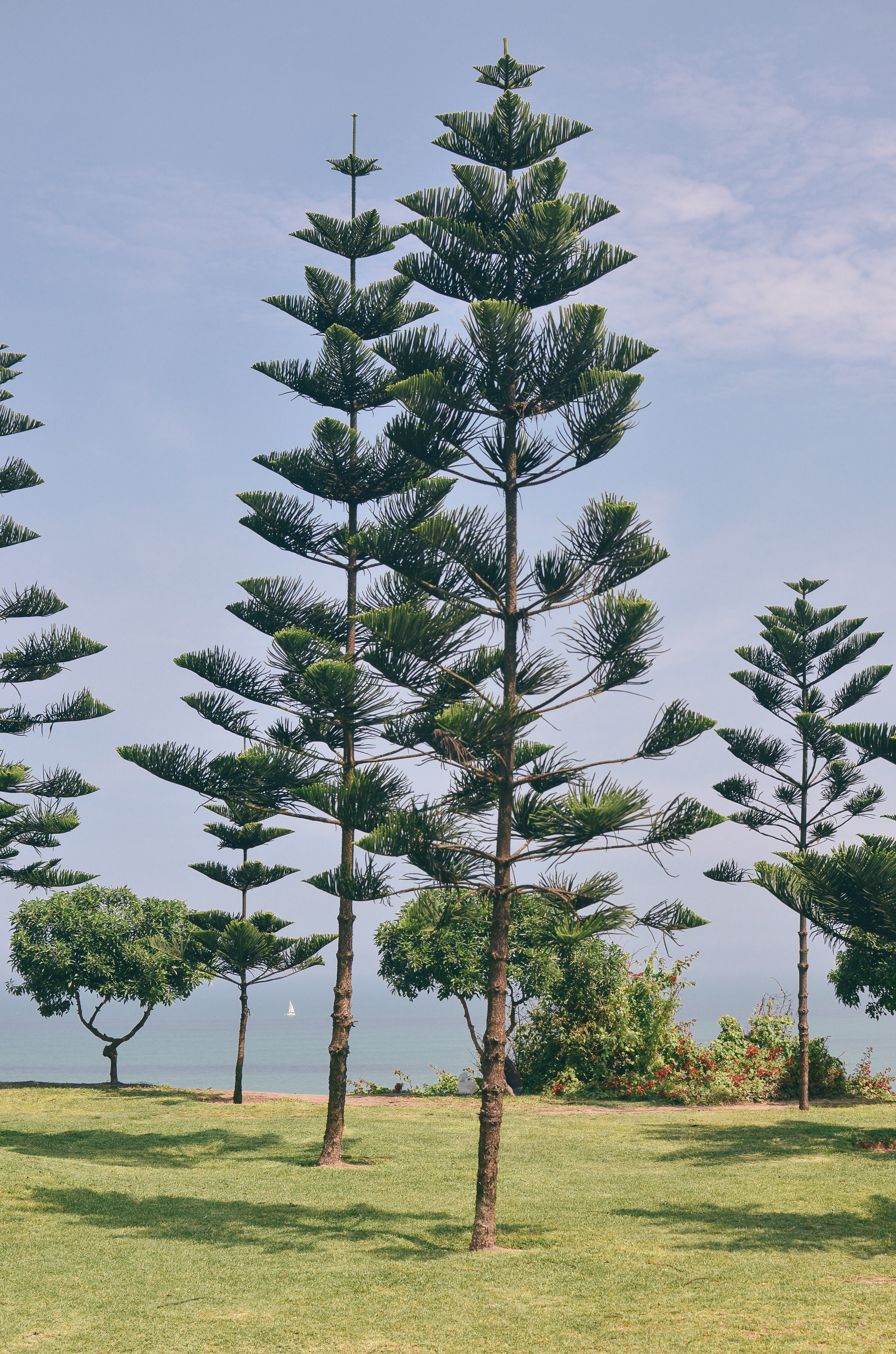 lima+peru+travel+guide+life+on+pine+blog +exchange_DSC_0763.jpg