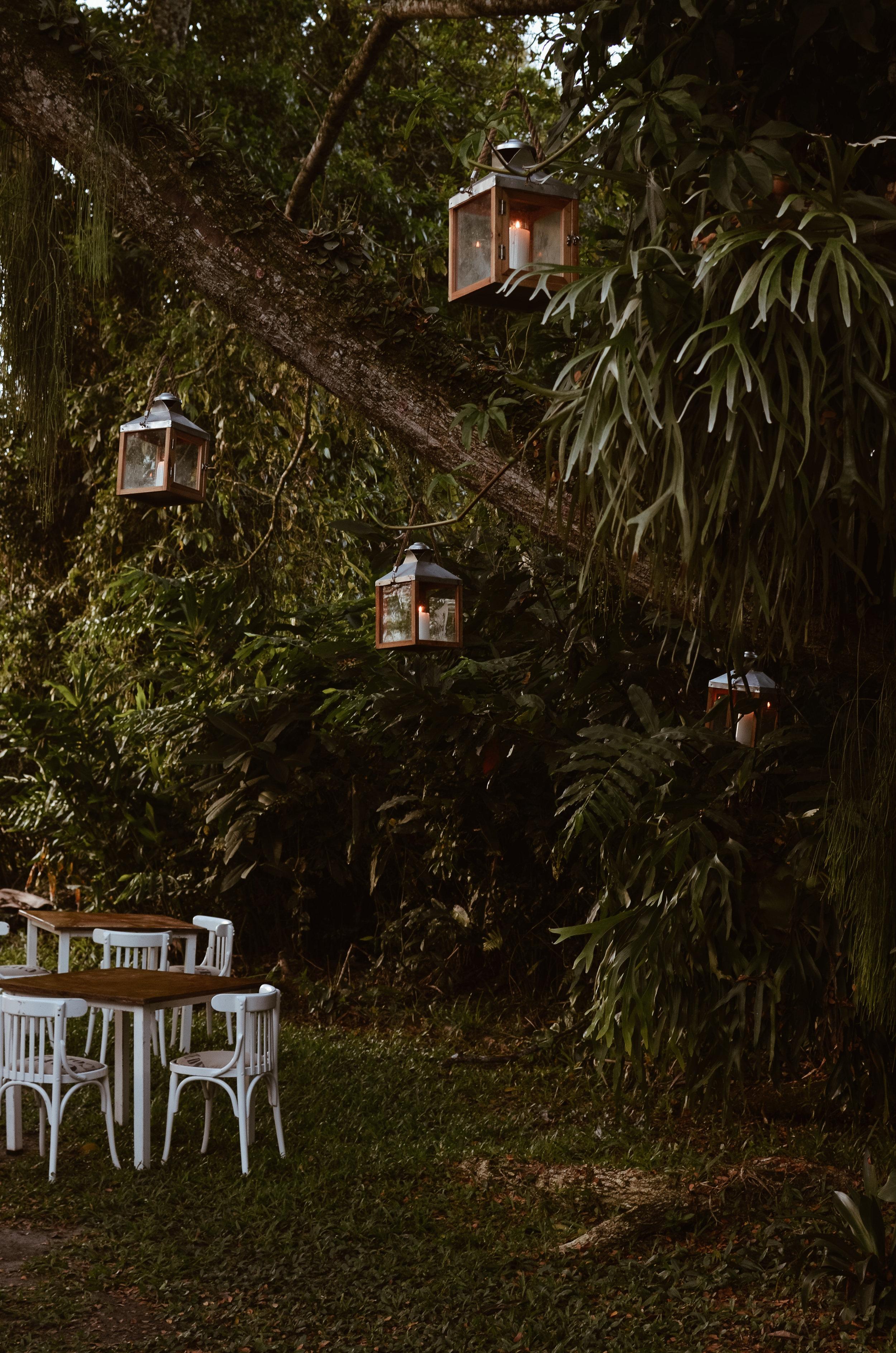 Hacienda+Bambusa+Coffee+Farm+Colombia_Life_on_Pine_DSC_0656.jpg