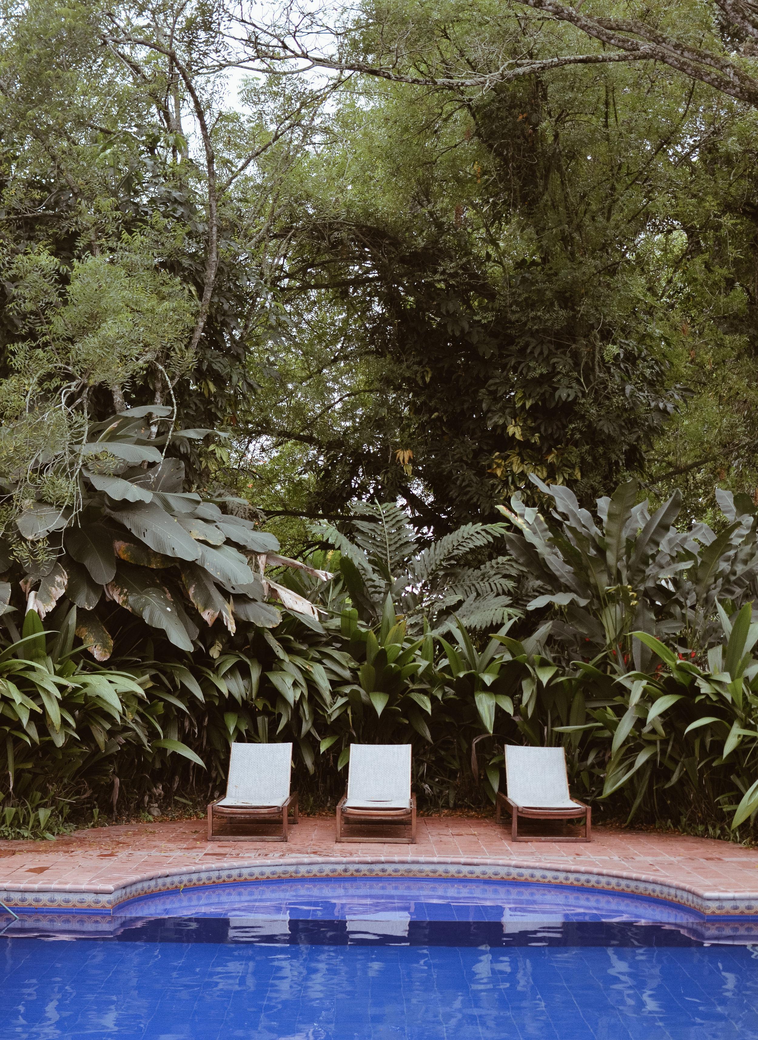 Hacienda+Bambusa+Coffee+Farm+Colombia_Life_on_Pine_DSC_0751.jpg