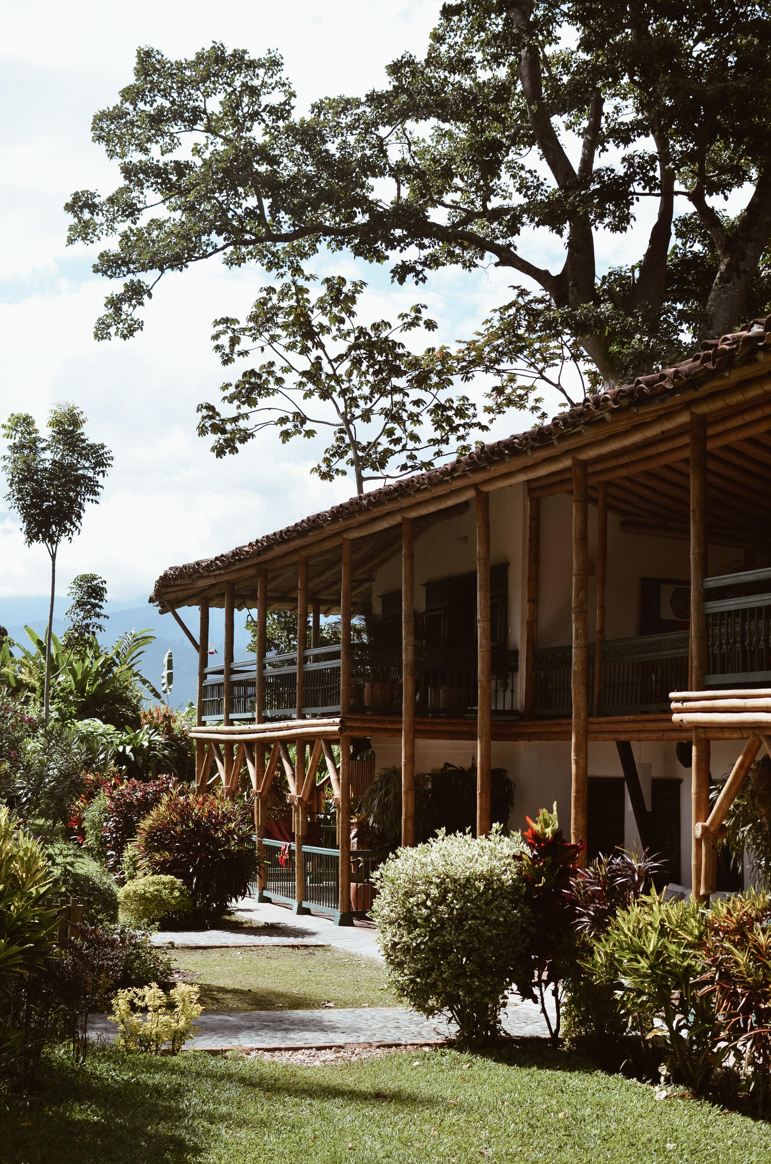 Hacienda+Bambusa+Coffee+Farm+Colombia_Life_on_Pine_DSC_0417.jpg