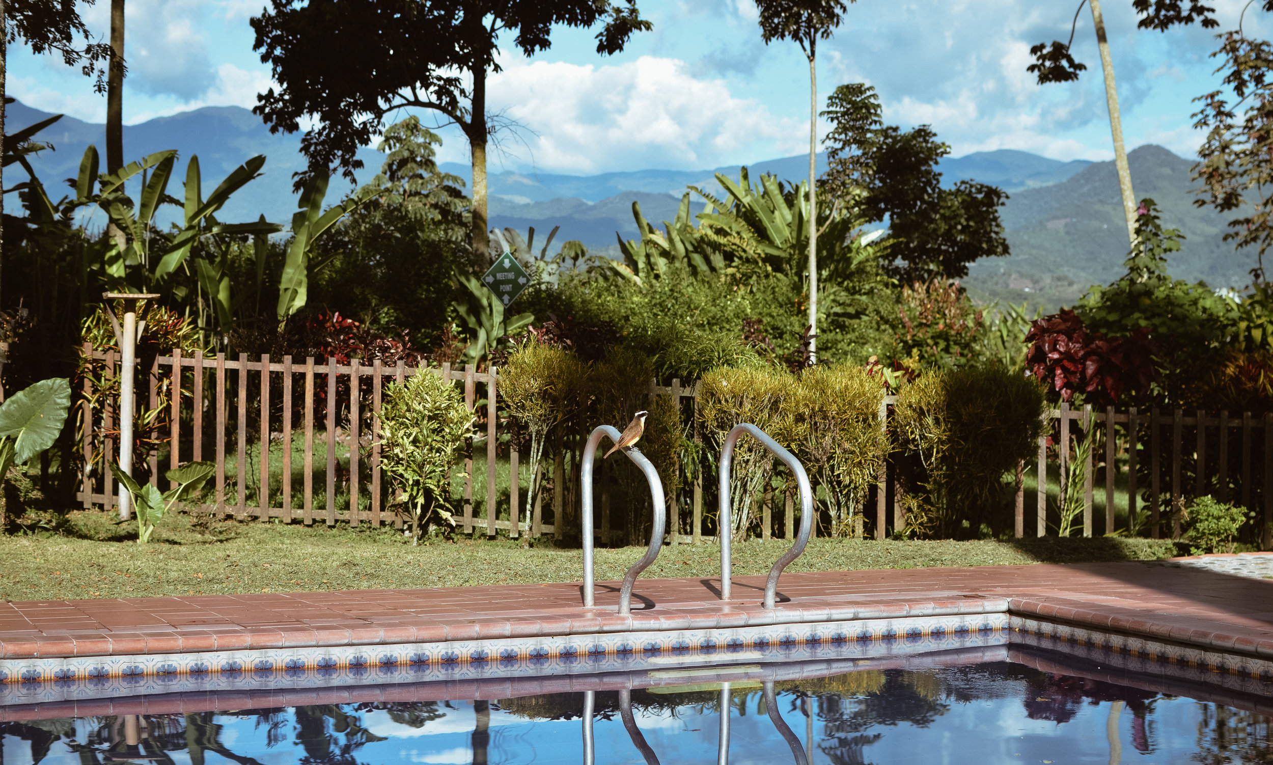 Hacienda+Bambusa+Coffee+Farm+Colombia_Life_on_Pine_DSC_0258.jpg