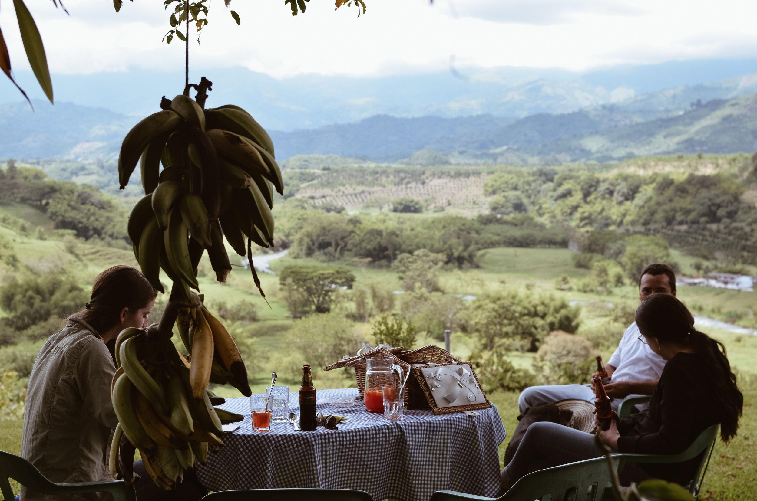 Hacienda+Bambusa+Coffee+Farm+Colombia_Life_on_Pine_DSC_0597.jpg