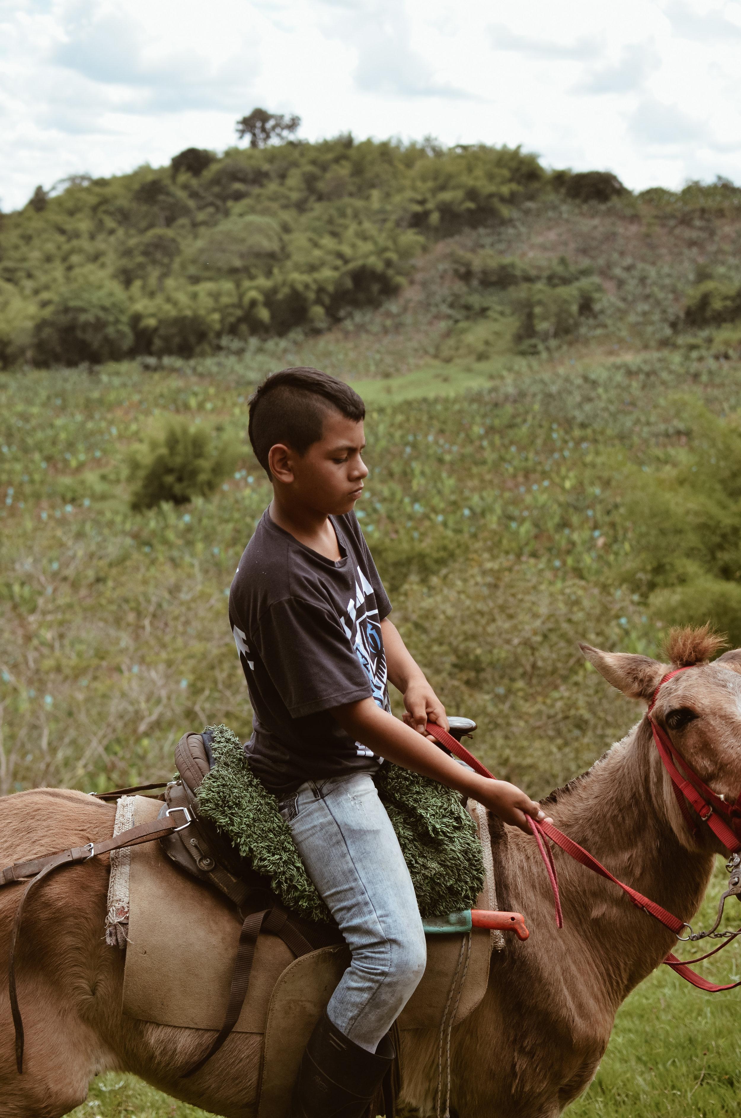 Hacienda+Bambusa+Coffee+Farm+Colombia_Life_on_Pine_DSC_0522.jpg