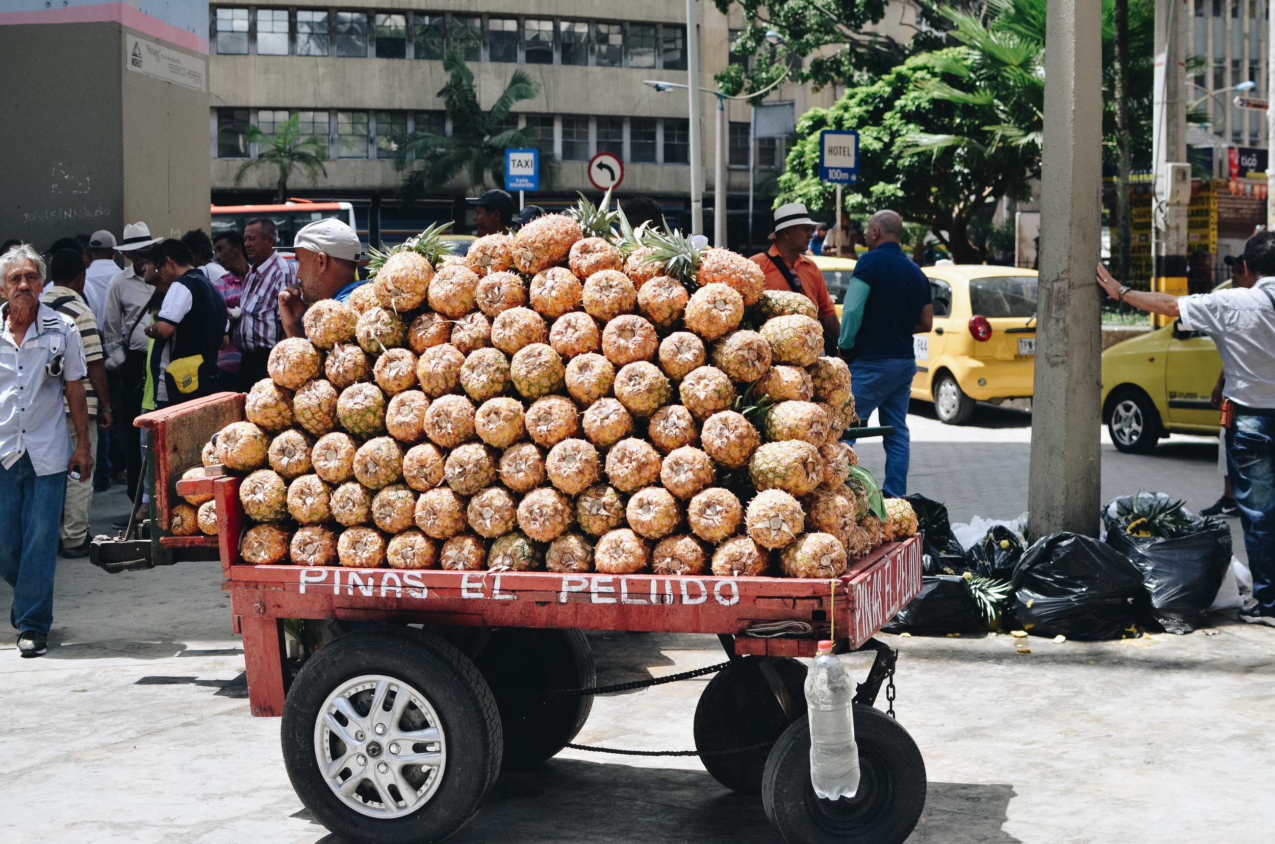 Medellin+Colombia_Life_on_Pine_DSC_0930.jpg