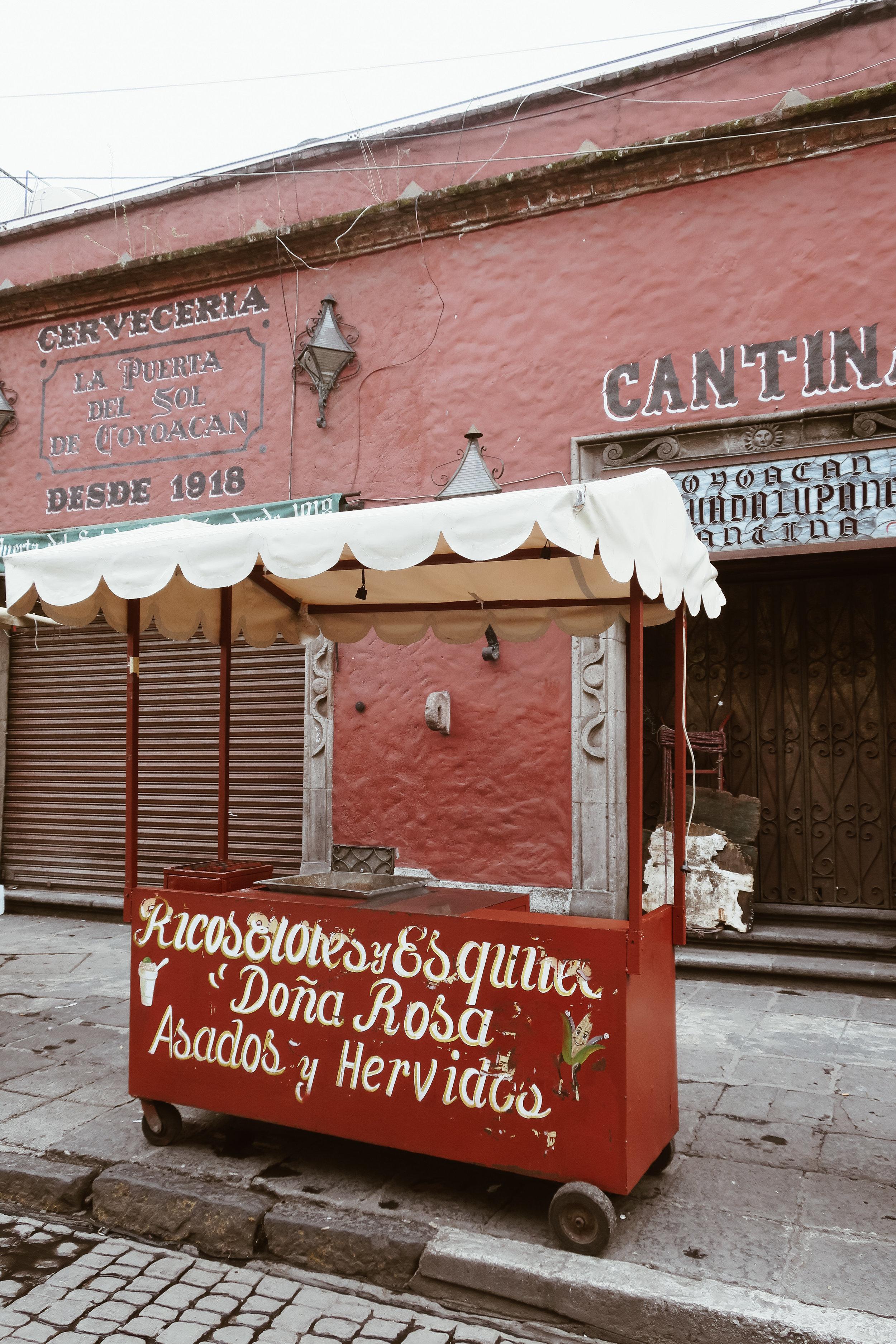 mexico+city+kate+parrish+life+on+pine_IMG_3365.jpg