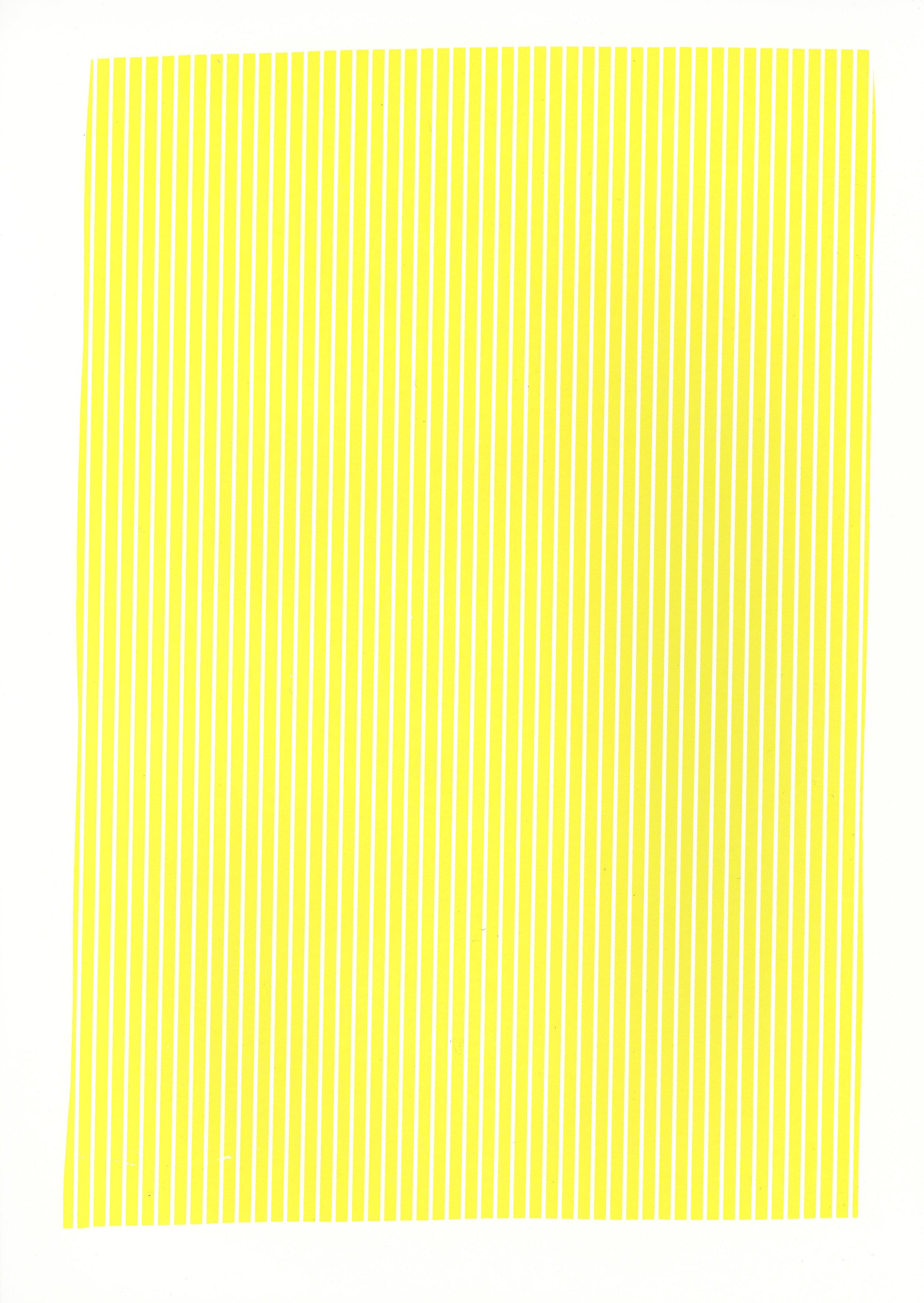 "Yellow study,2017, silkscreen, 19"" x 12.5"""