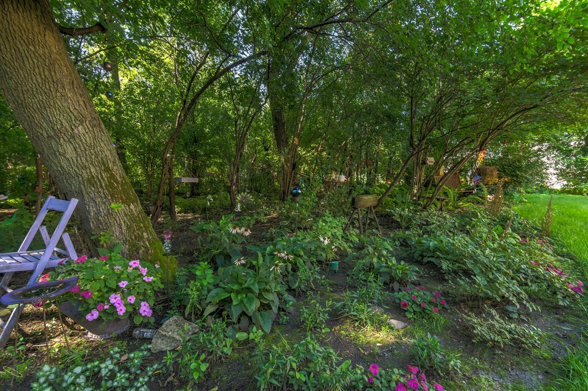 1217-81st-avenue-n-brooklyn-park-mn-garden.jpg