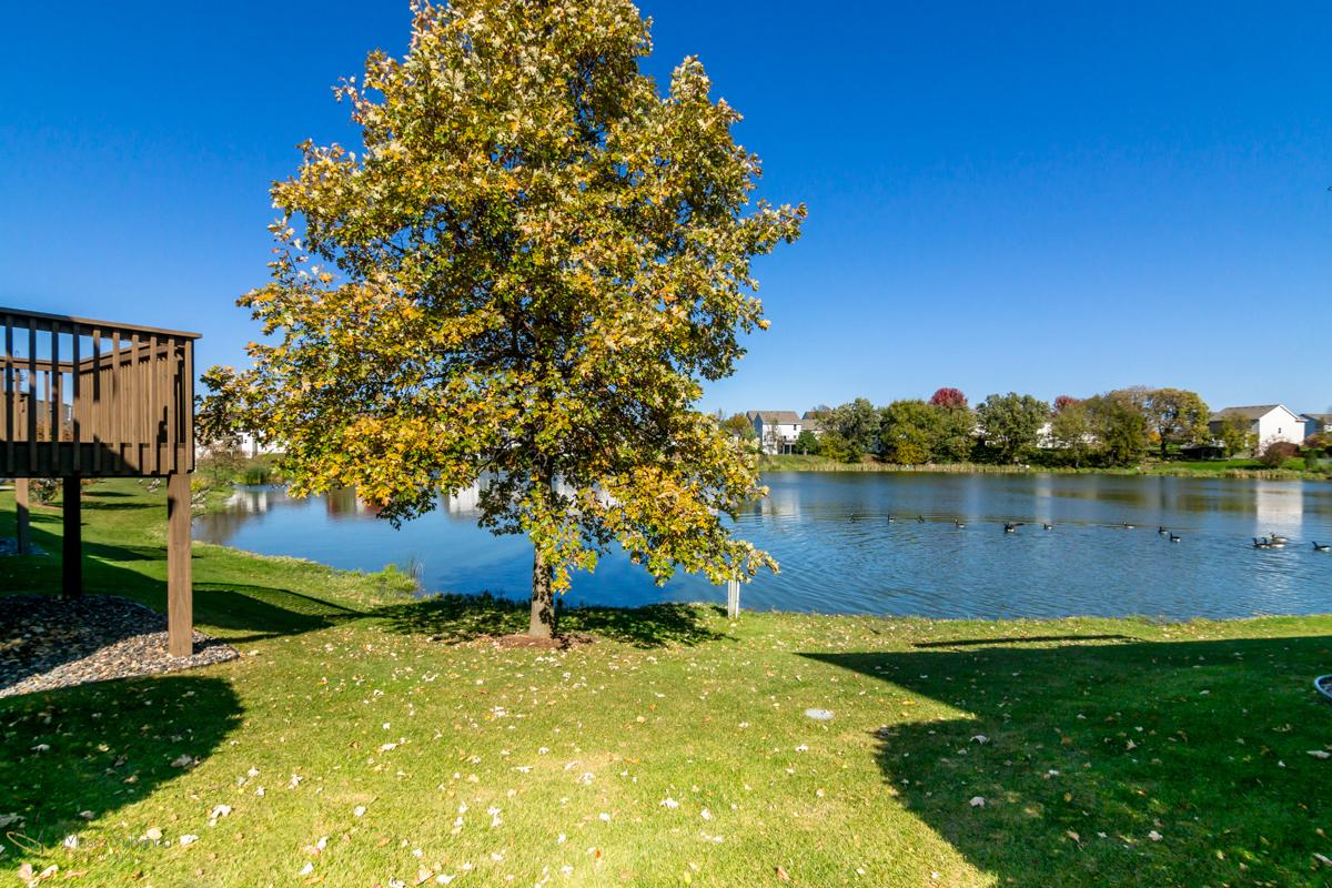 10785-181st-circle-elk-river-mn-pond.jpg