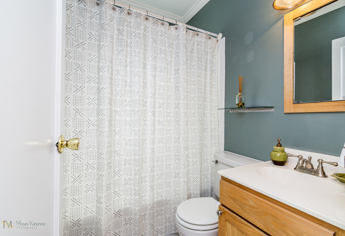 1608-alameda-street-st paul-mn bathroom.jpg