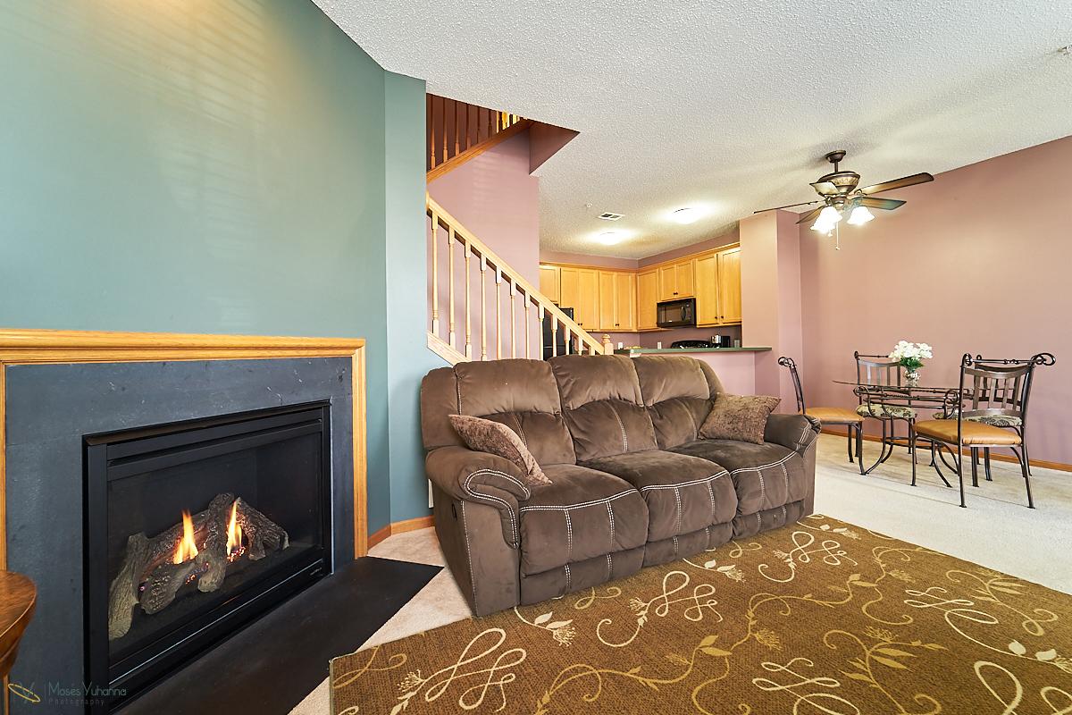 14645-rhinestone-street-nw-ramsey-mn-LR Fireplace.jpg