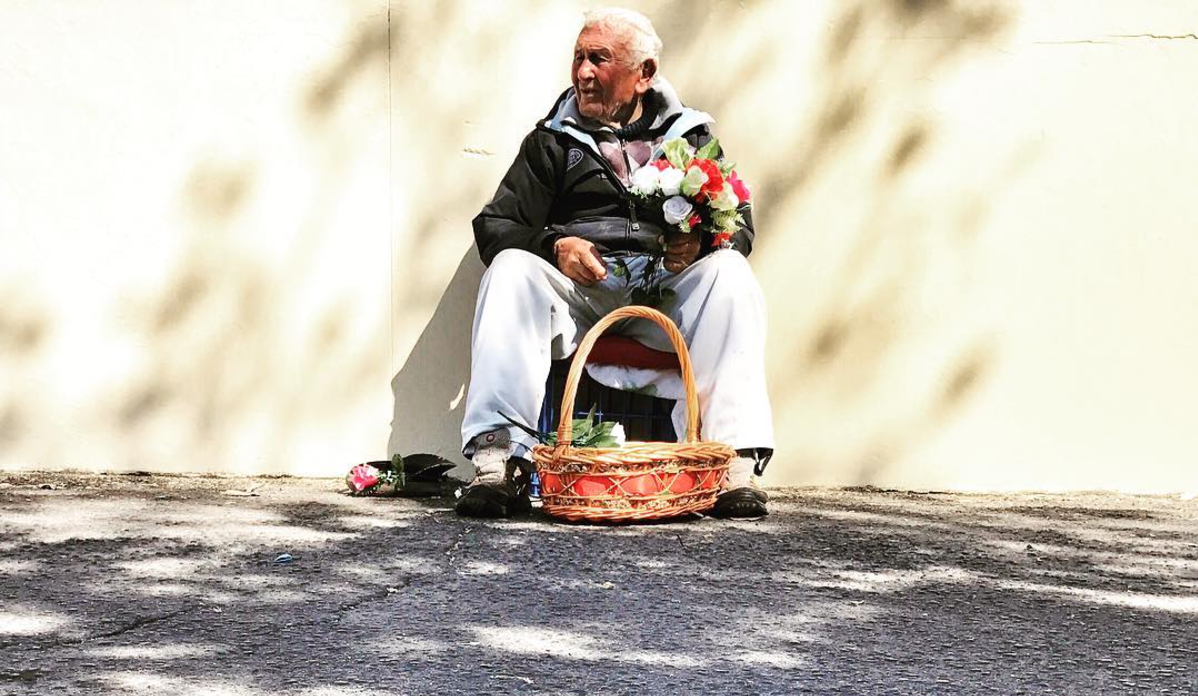 Flower man  (Newtown) | #hellolocal   #tennisballs   #behindIGA