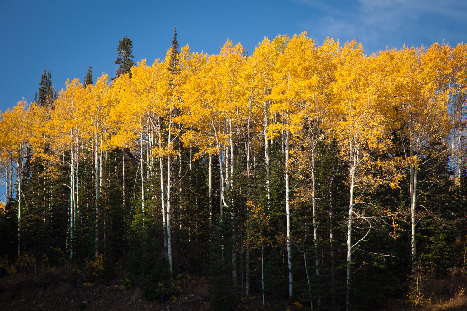 Park City in Fall