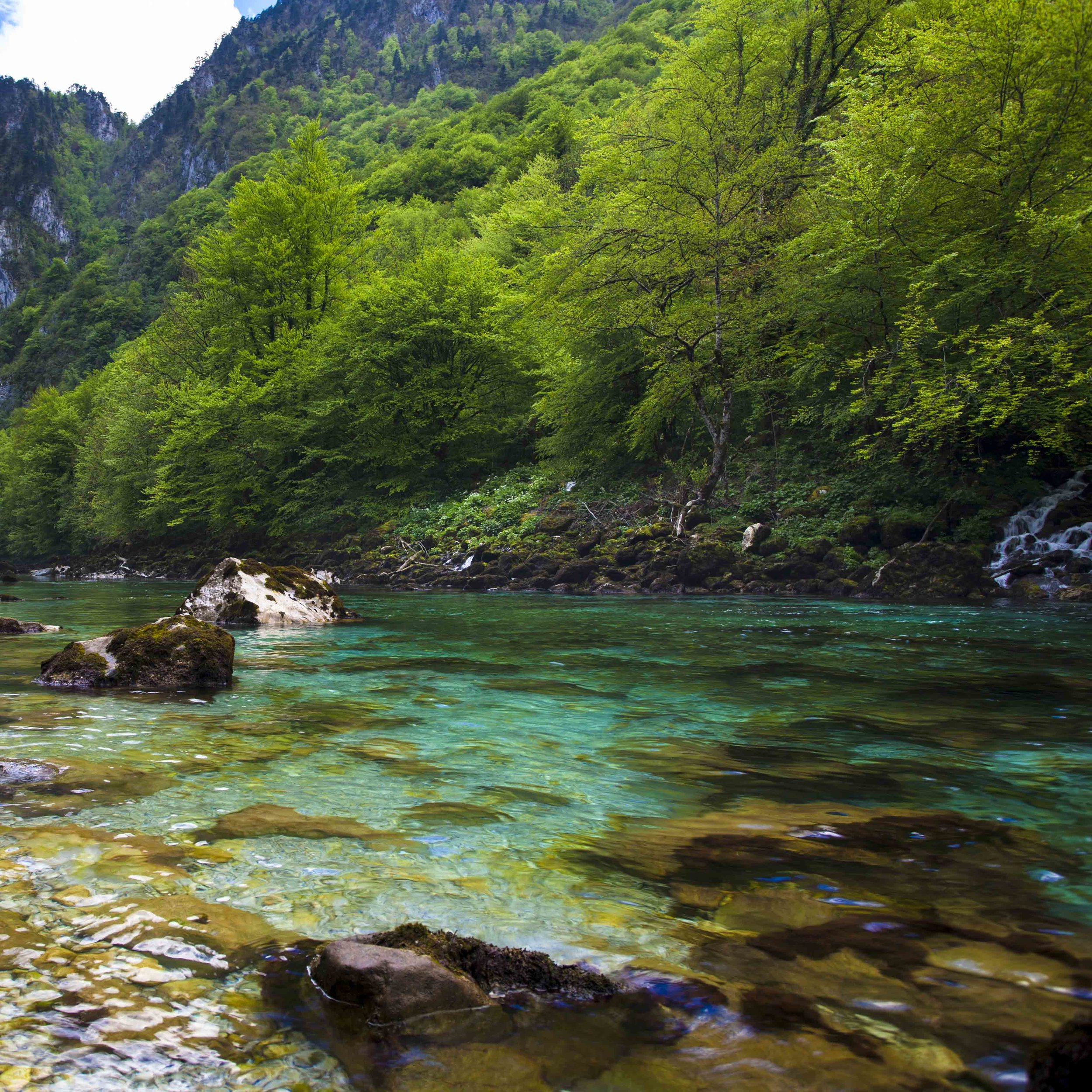 Clear waters of Montenegro
