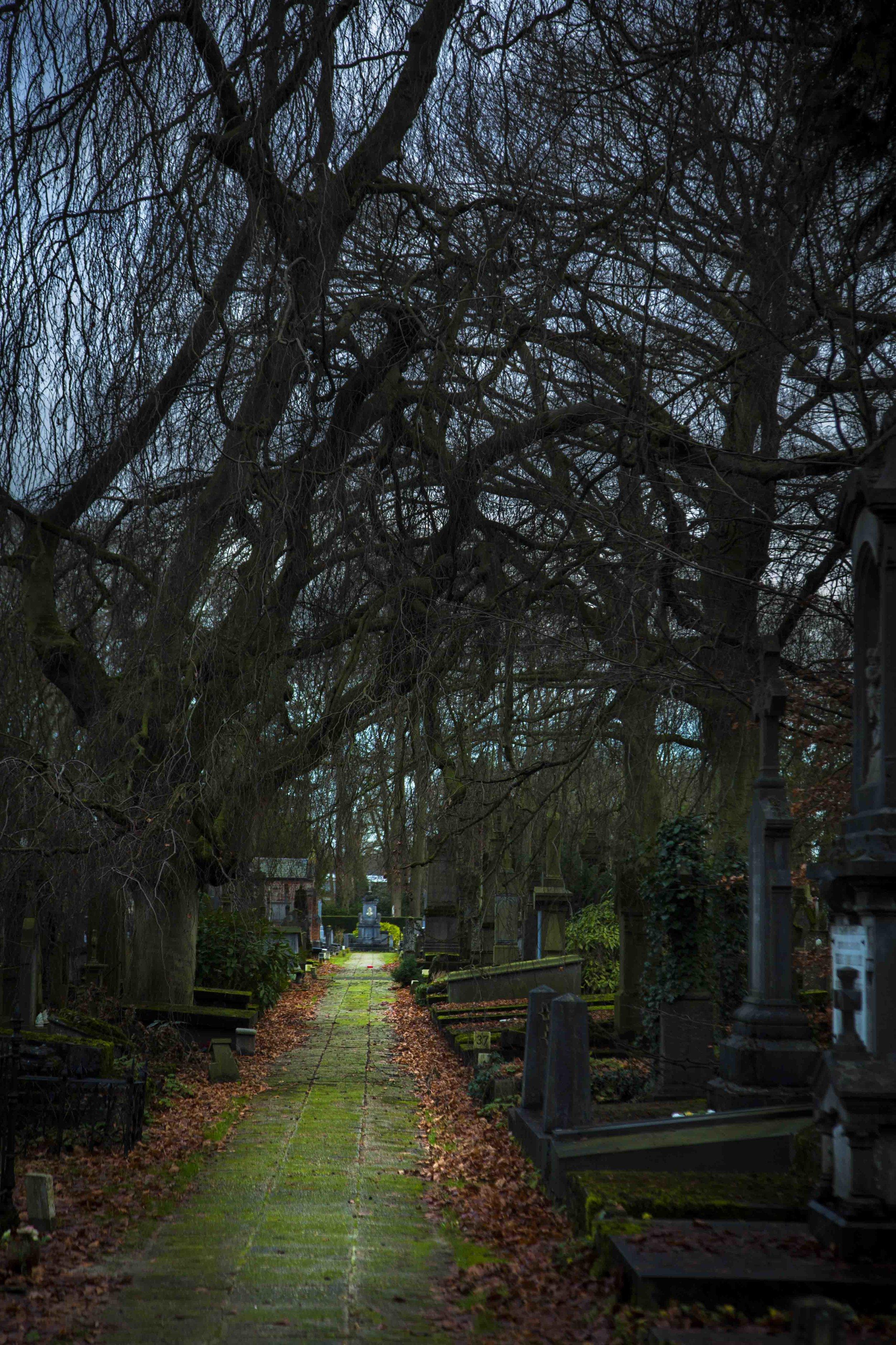 Romantic cemetery in Belgium