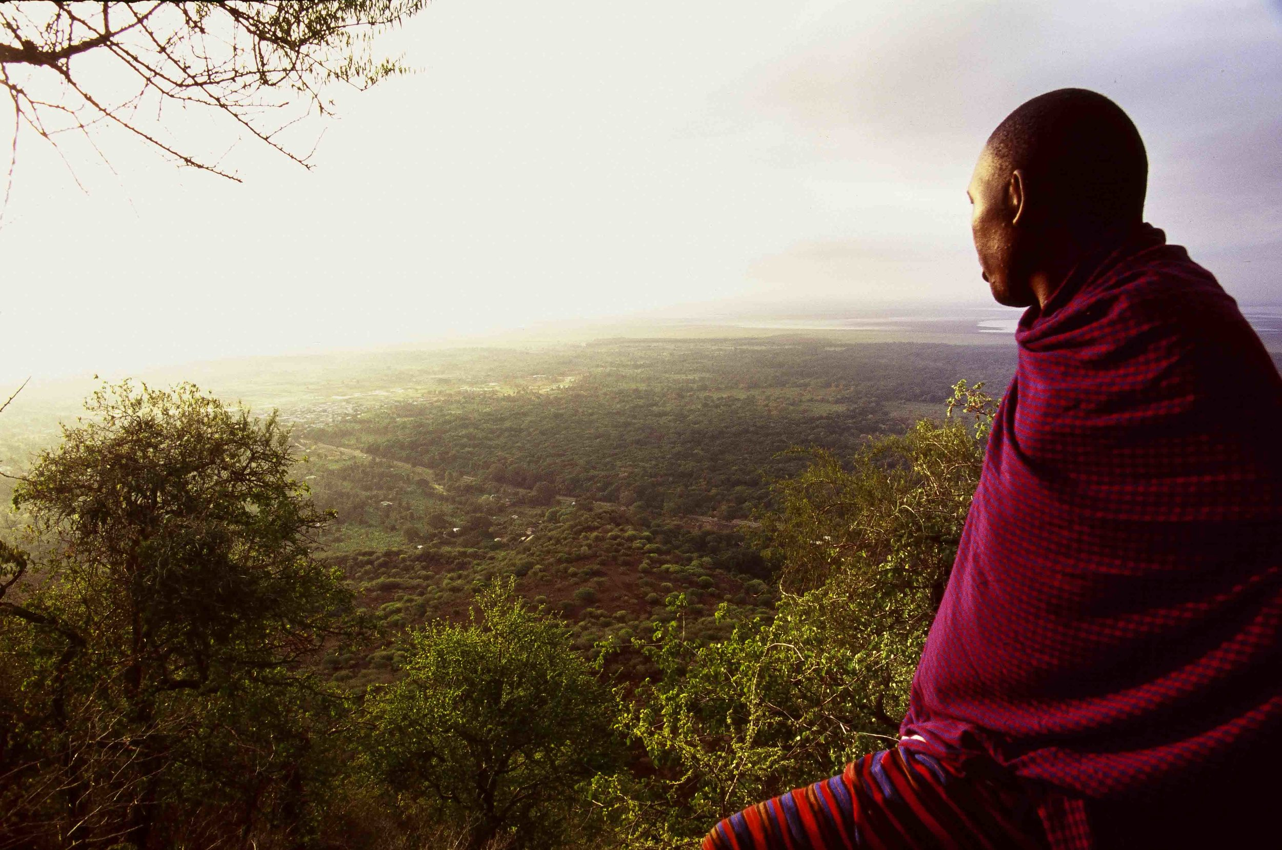 Masai warrior at day break