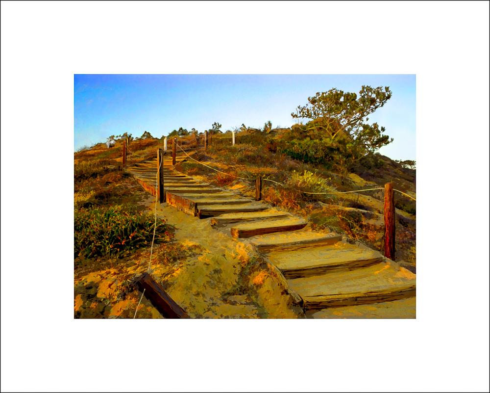 Torrey Pines, Steps - Guy Fleming Trail