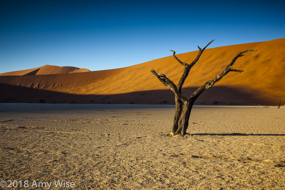 africa2018-1395.jpg