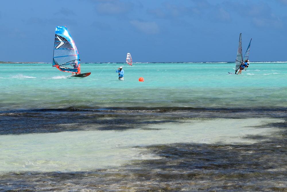 fish windsurf_090.JPG