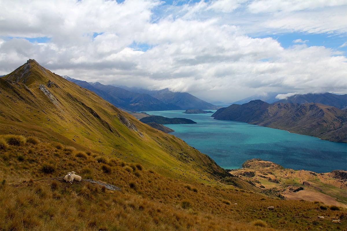 Mahar-Travel-NZ-sjeep-1200x800.jpg