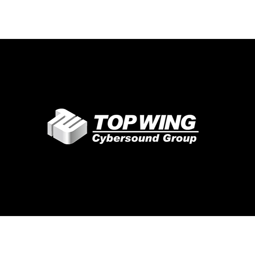 TopWing.jpg