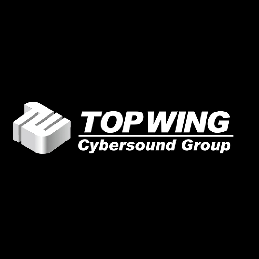 TopWing   - Innovative new MC cartridge manufacturer from Japan. All new generator system and low cost stylus replacement.