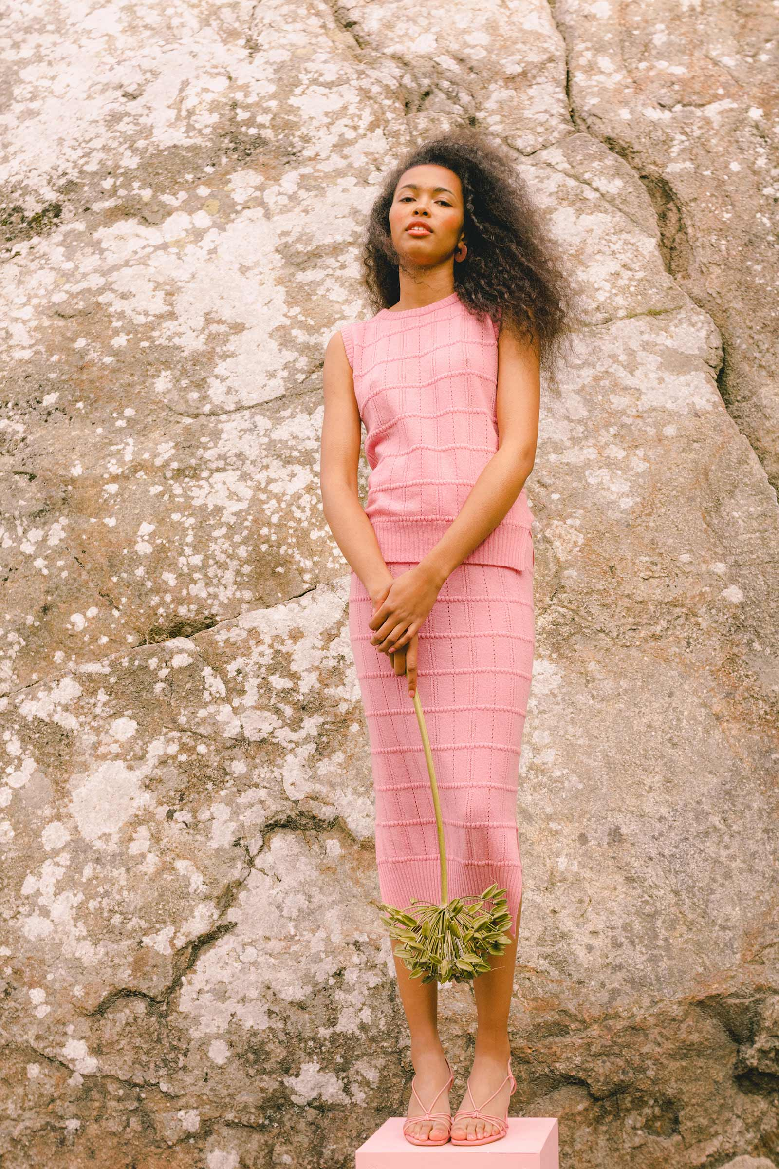 pinkgingam4.jpg
