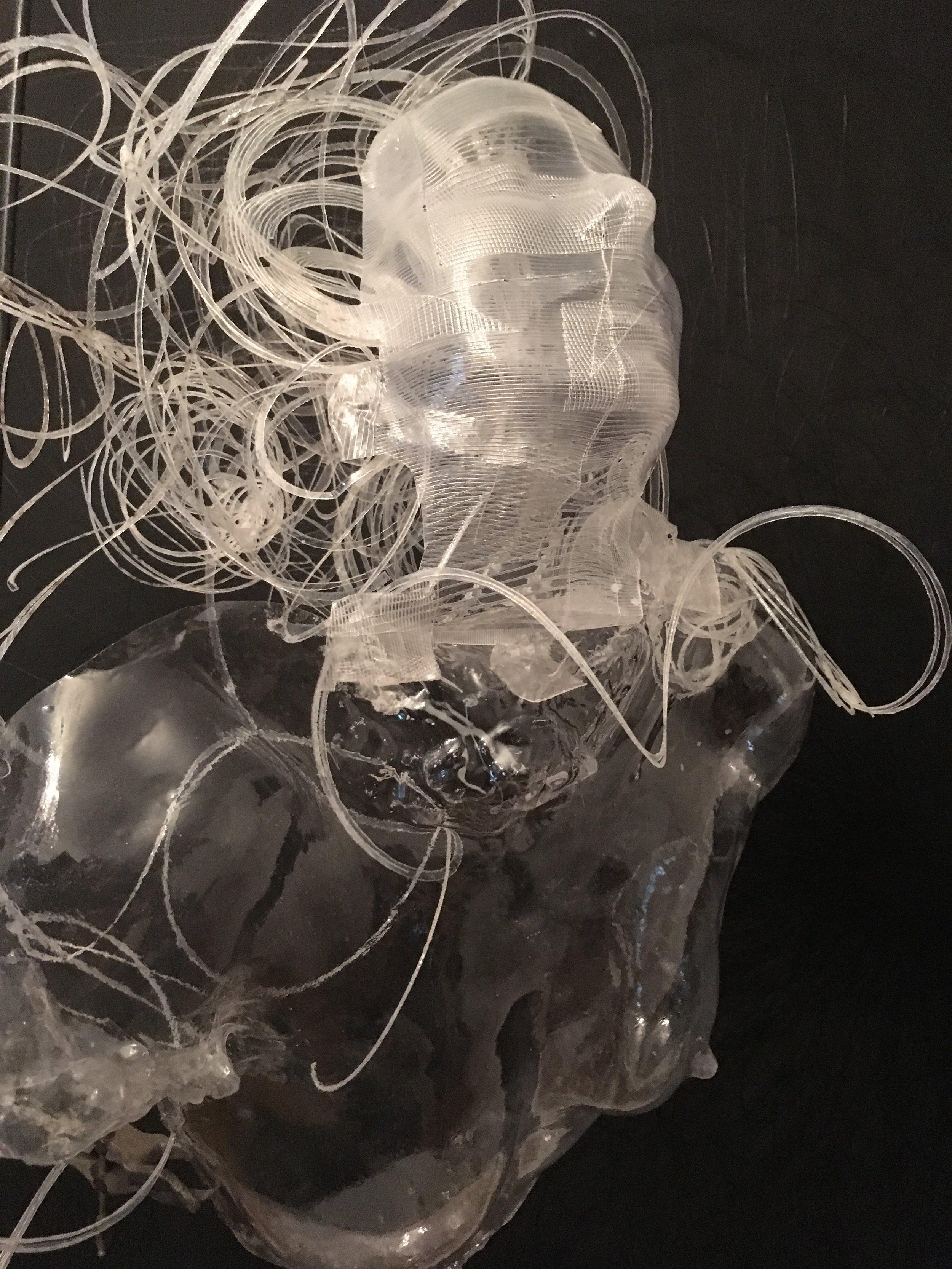 Dreaming of Schrodinger's Cat, 2016 in light and plastics. Image courtesy of Maria Katsika:  www.marinetanguyart.com