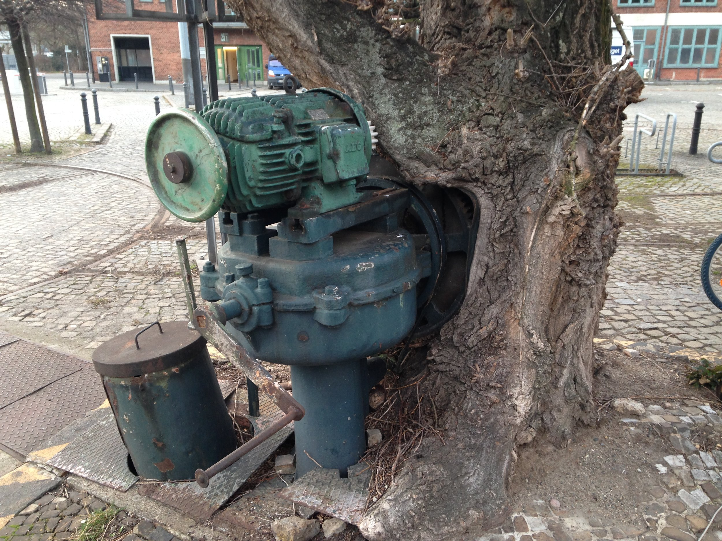 The gearworks for the switching platform, partially absorbed by a tree