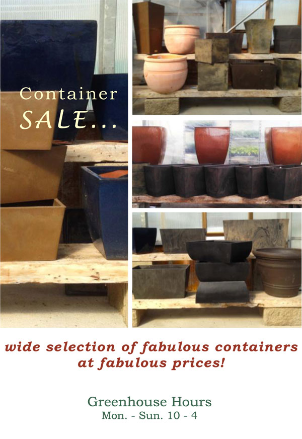 Container-Sale-2018.jpg