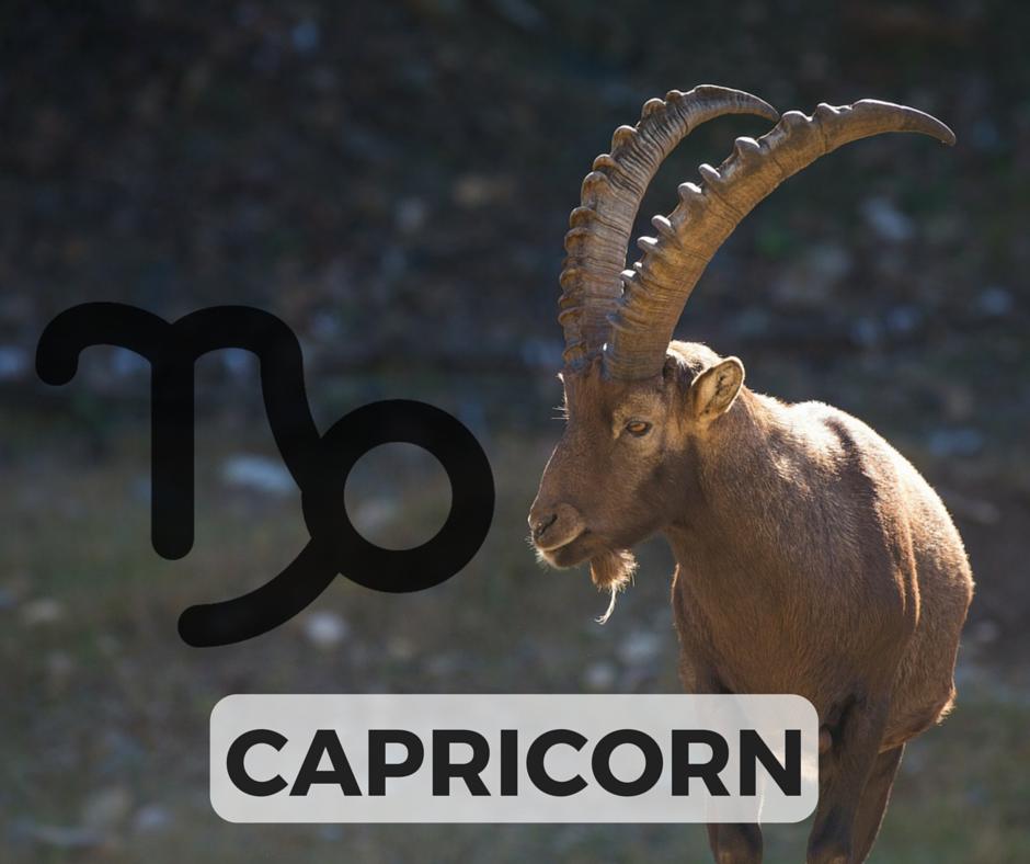 The CAPRICORN Signs + Symbol (icon designed by Freepik!)