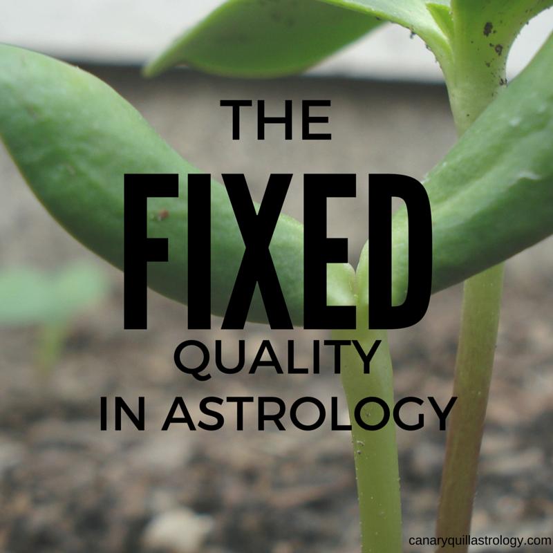 The FIXED Quality: Taurus, Leo, Scorpio, Aquarius