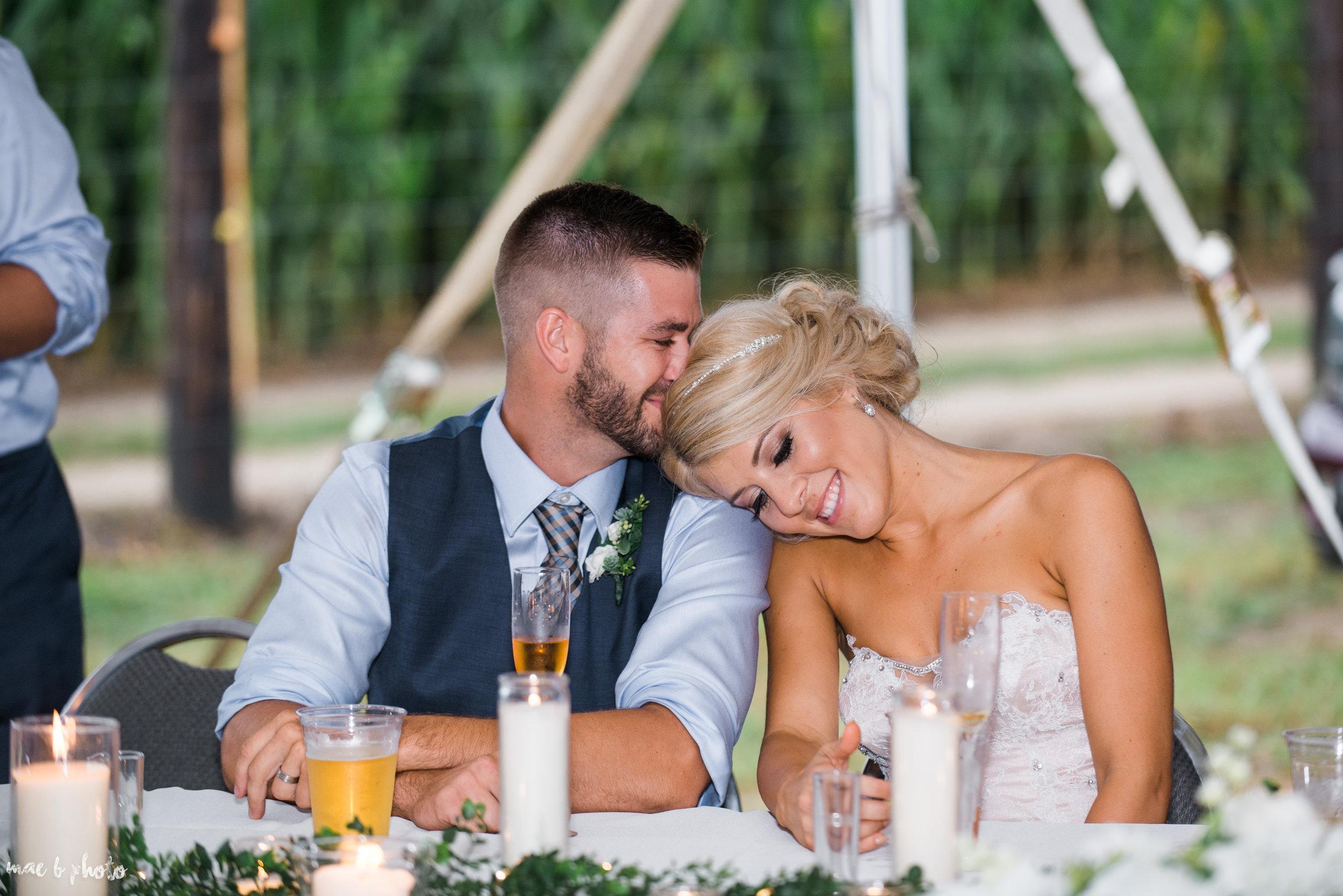 Tara & Matt's Elegant Backyard Summer Wedding in Kinsman, Ohio-91.jpg