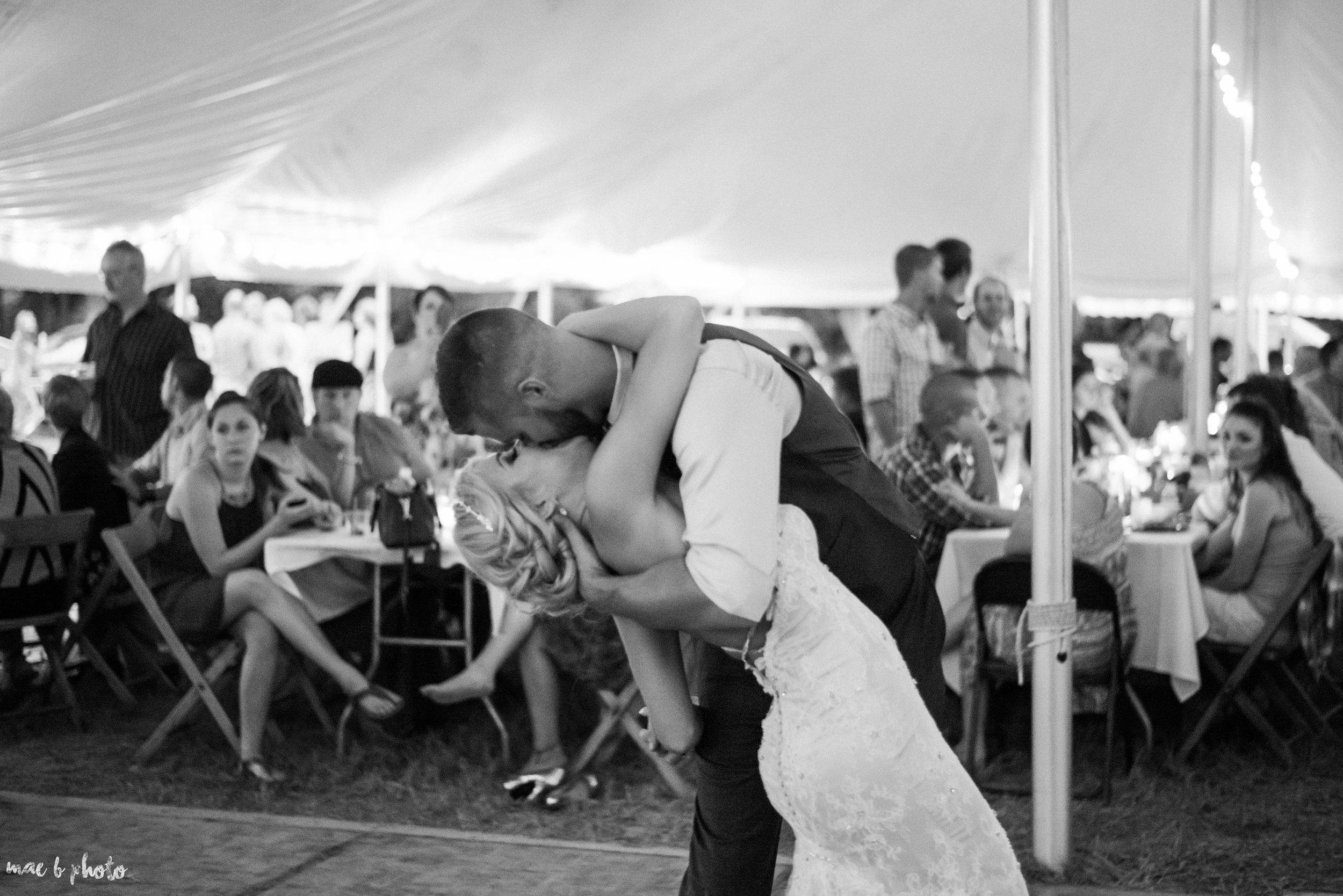 Tara & Matt's Elegant Backyard Summer Wedding in Kinsman, Ohio-93.jpg